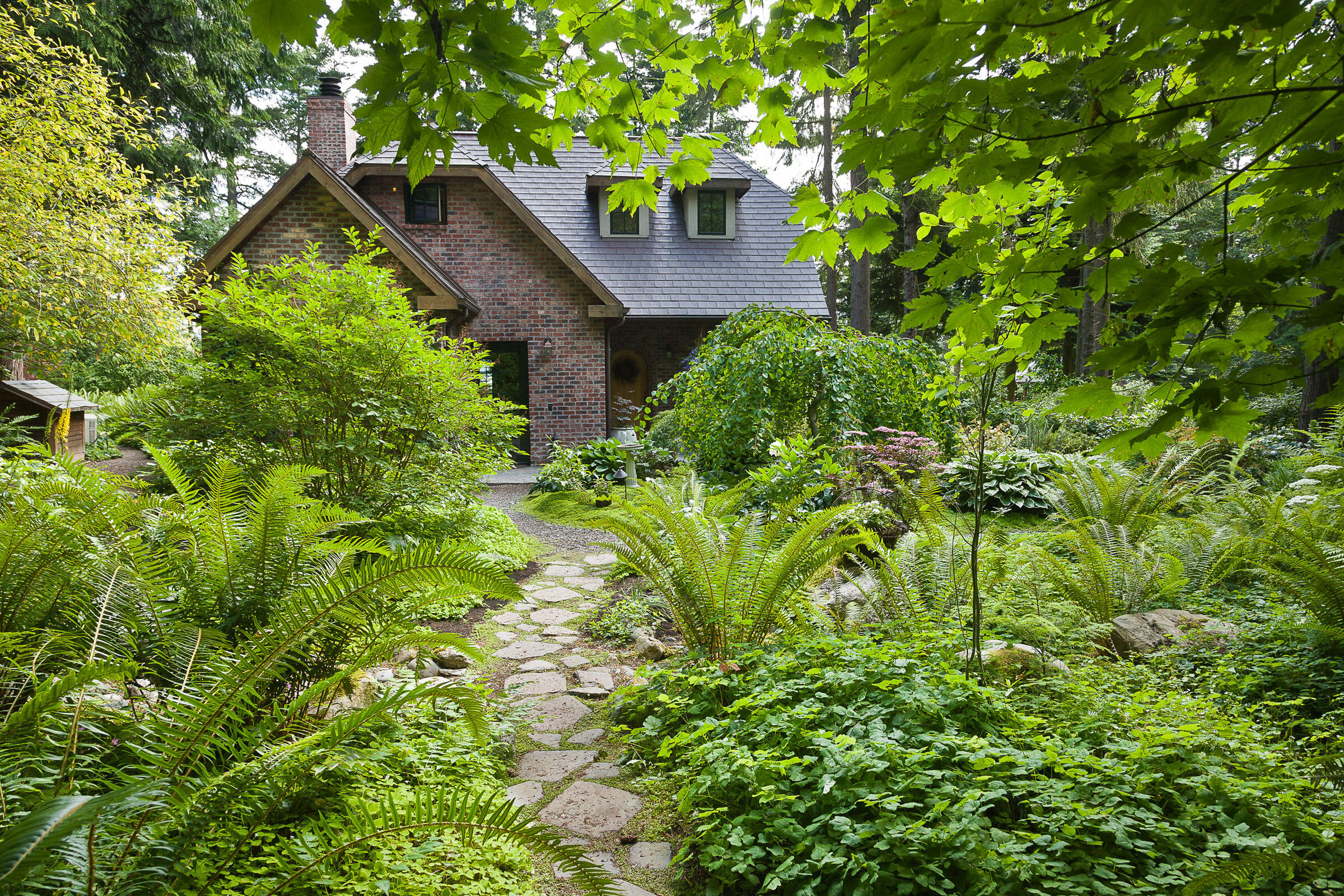 Sword ferns, Vancouveria, and redwood sorrel flank a flagstone path at a home in Bow, Washington. Mark Turner