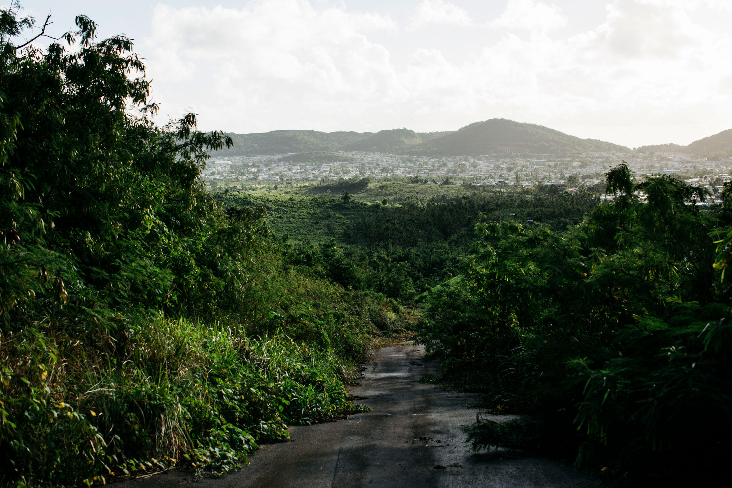 The area around Fajardo, seen in the distance, was hit especially hard by Hurricane Maria. Erika P. Rodriguez