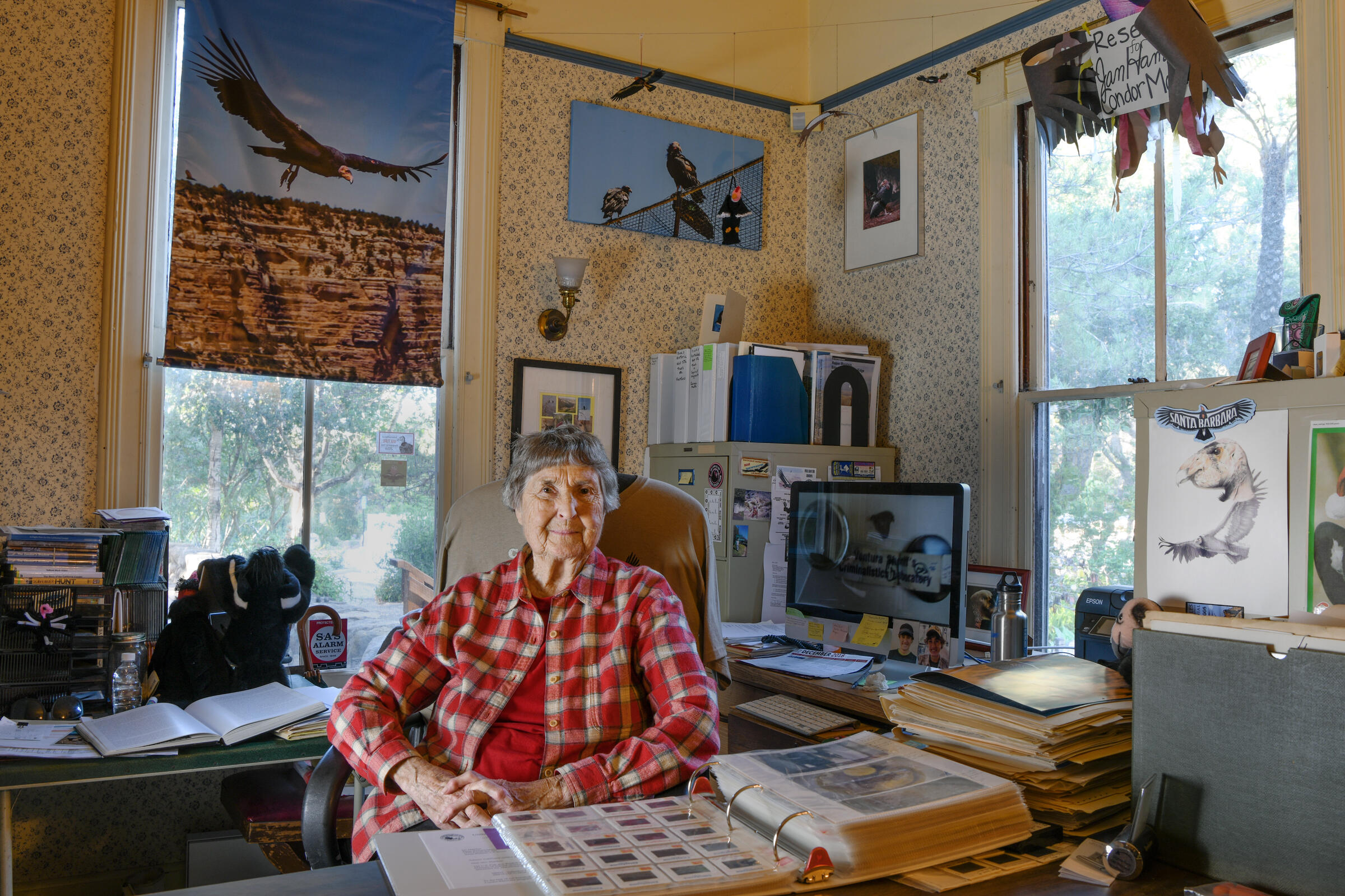 Biologist Jan Hamber in her office at the Santa Barbara Museum of Natural History where she maintains the Condor Archive, a treasure trove of historical documents. Courtesy of Santa Barbara Museum of Natural History