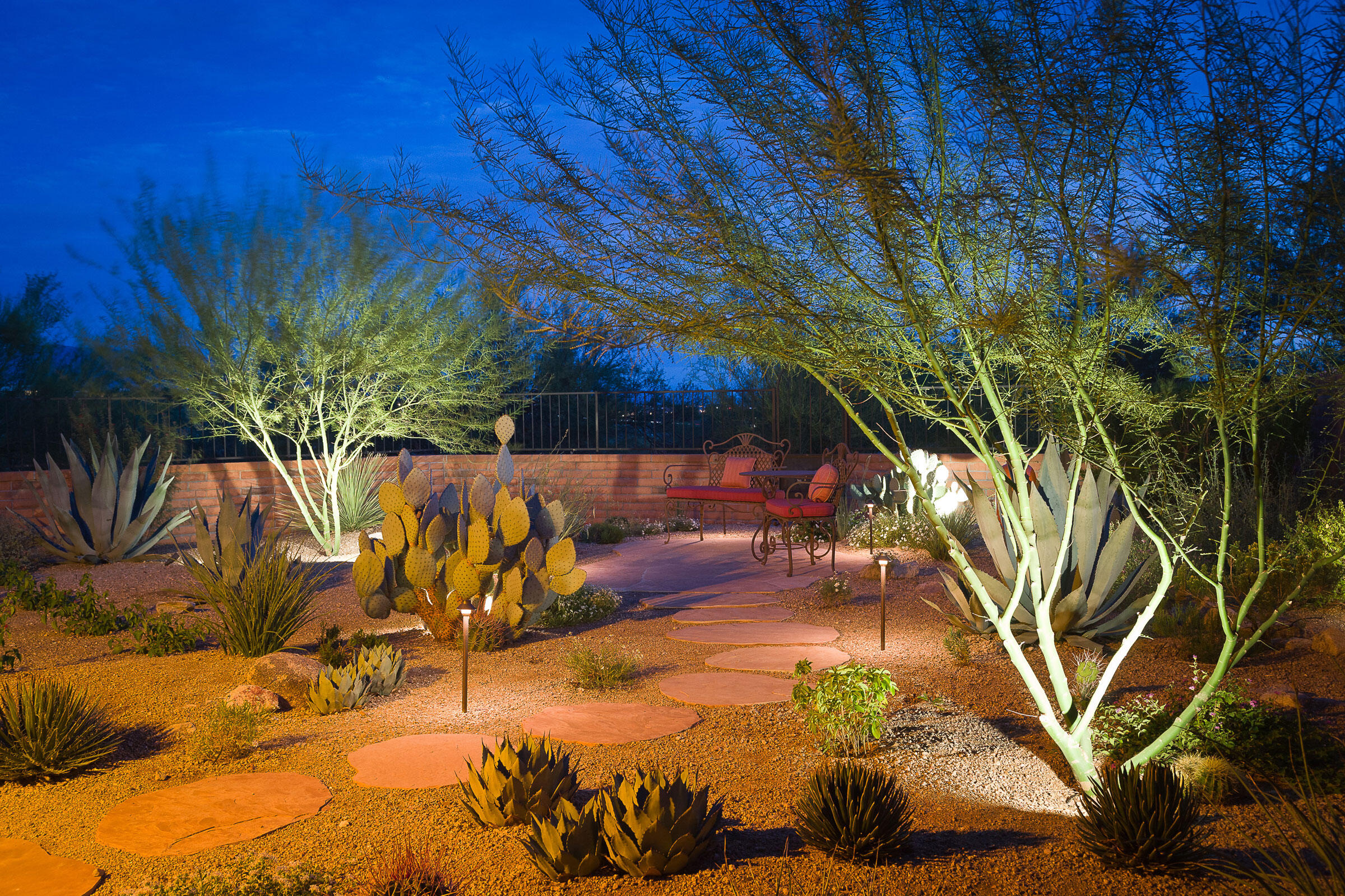 Sally Heinlein's garden in Tucson, Arizona, boasts agaves, red yucca, and prickly pear cactus. Here it is illuminated at dusk. Mark Turner