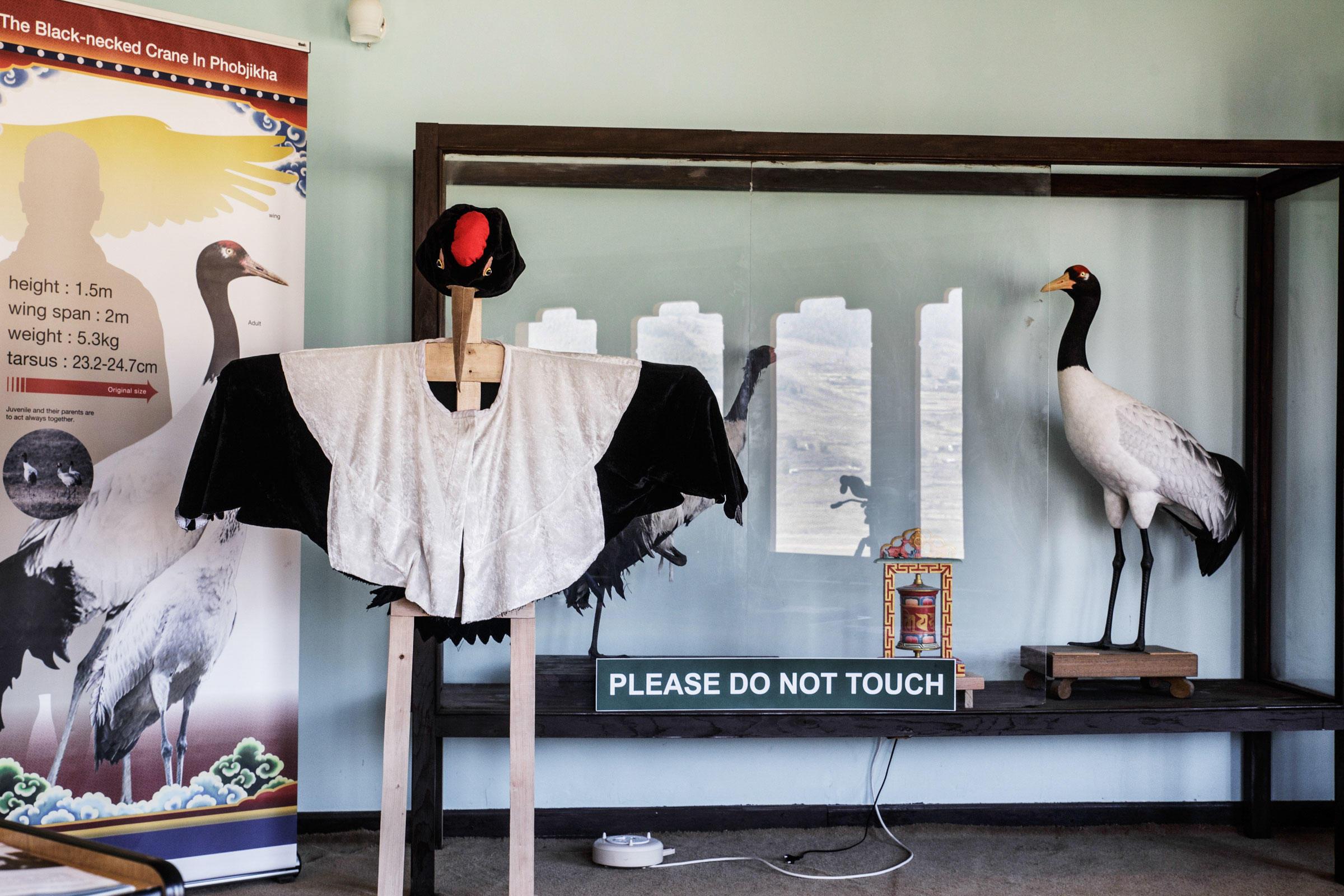 Black-necked Crane information displays at the RSPN center. Ambika Singh