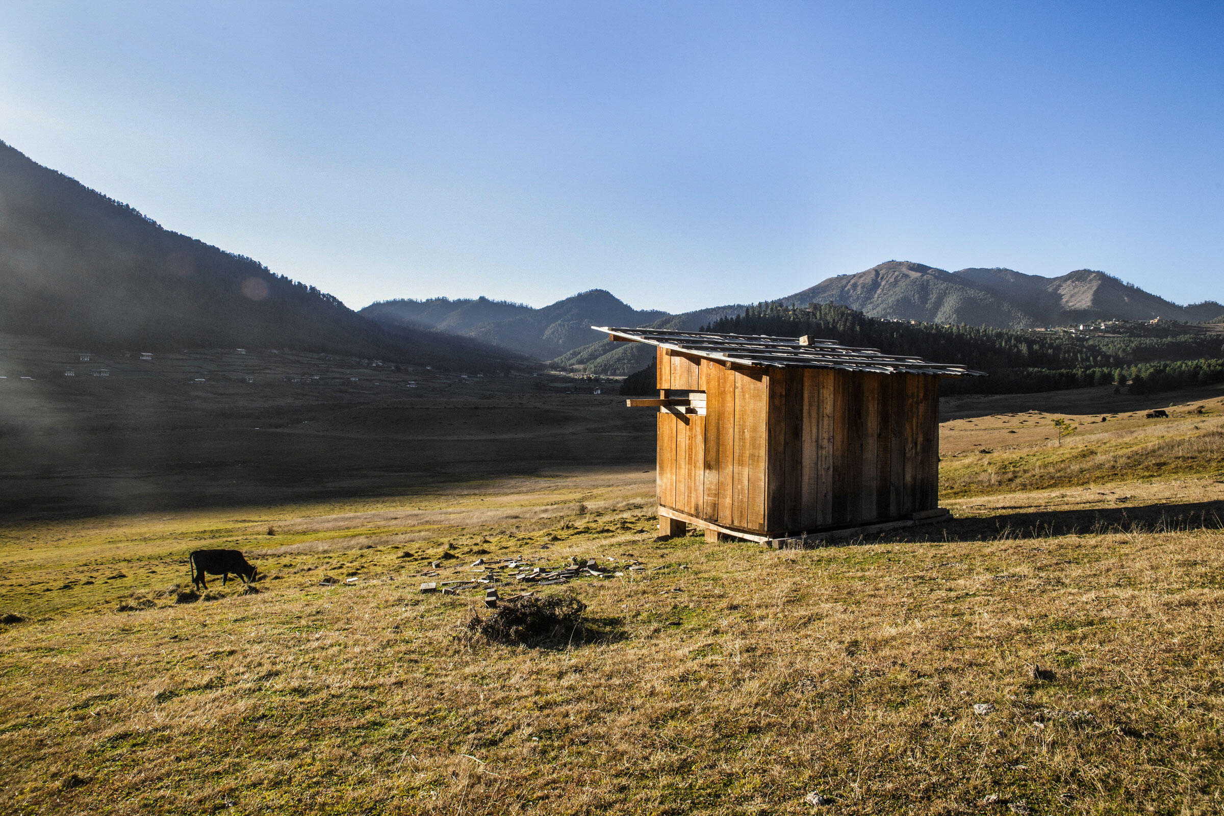 An observation box located opposite the RSPN information center. The box allows staff to closely observe the cranes without disturbing the birds. Ambika Singh