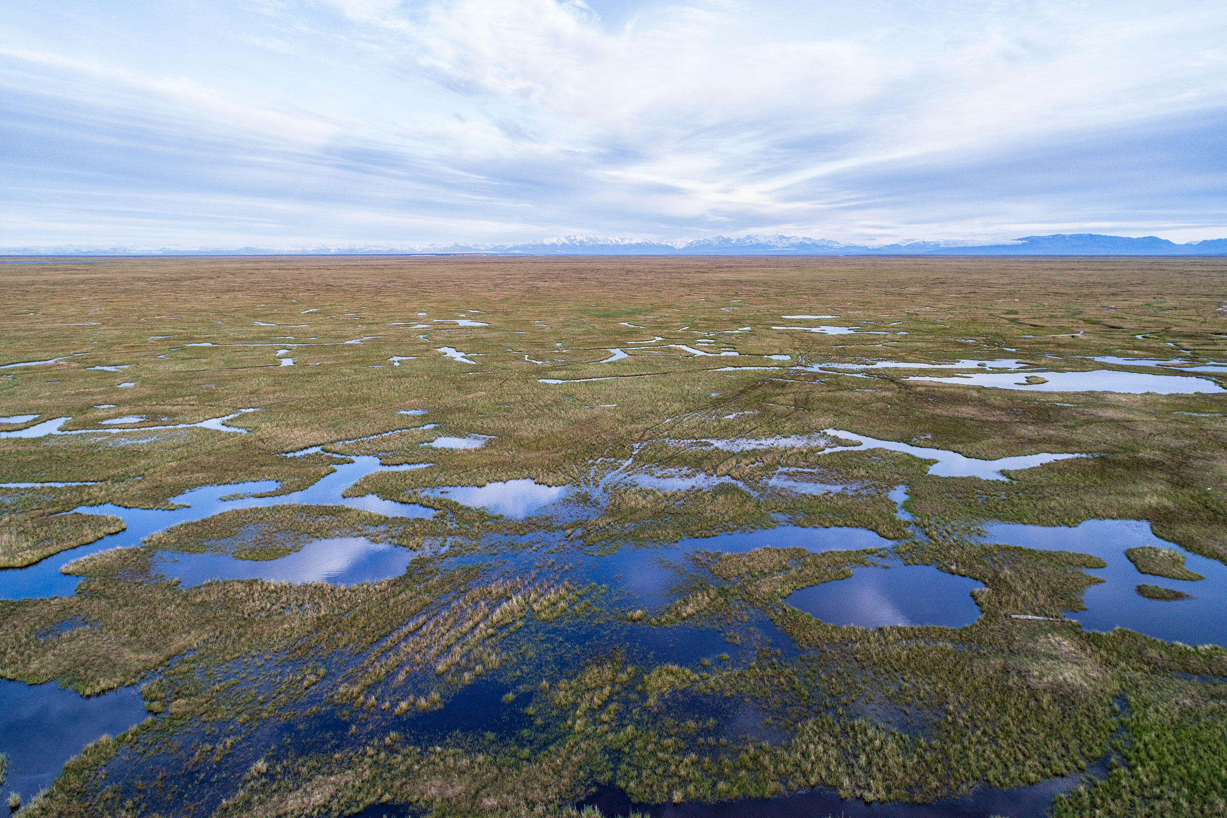An aerial view of the lush 1002 lands. The refuge is home to more than 200 avian species, with the the coastal plain a critical nesting and rearing site for birds from all 50 states. Peter Mather