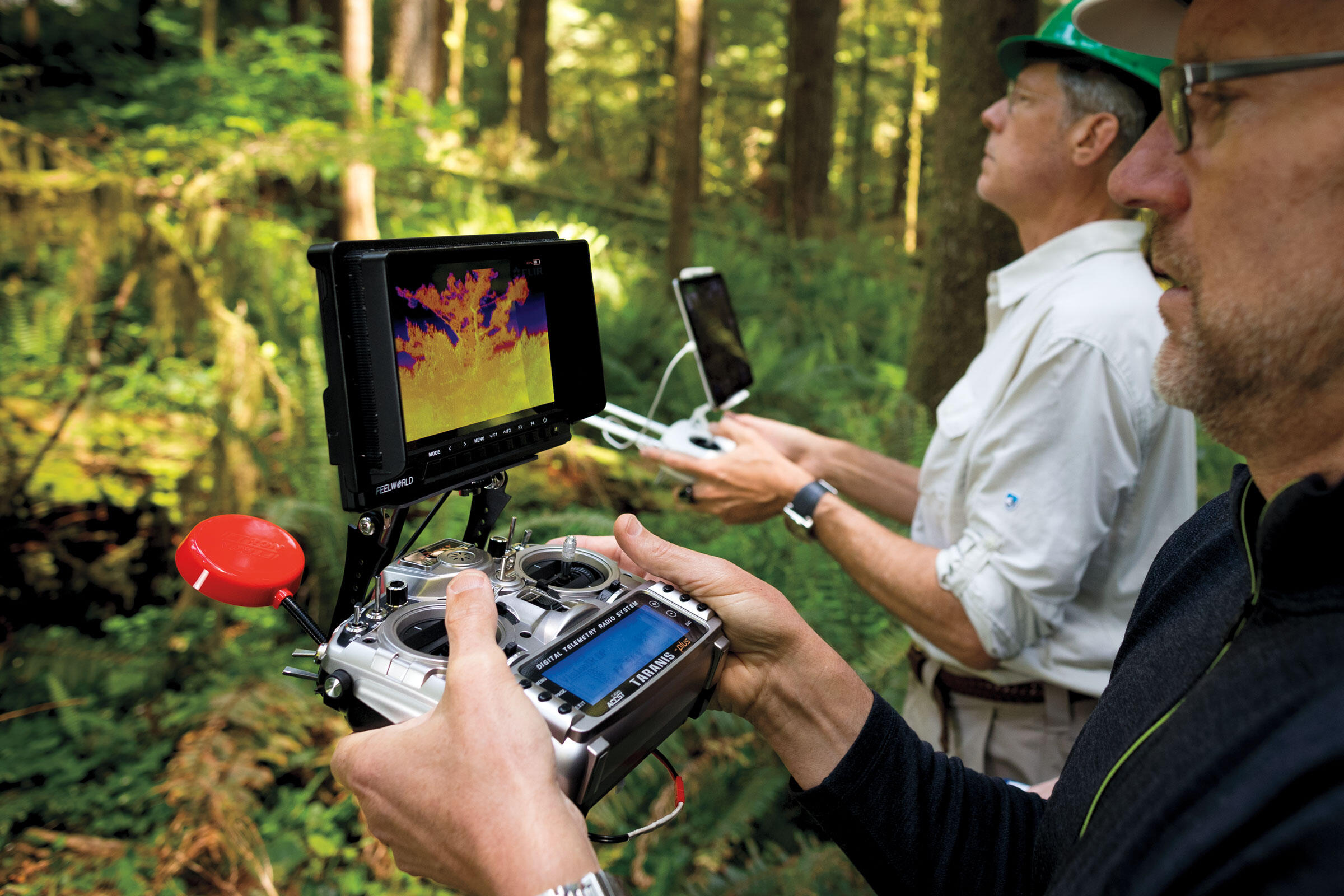 Birds show up as white-hot spots on the tablet screen. It can show false positives such as reflecting sunlight. This year the drones weren't able to definitively locate any murrelets on their nests. Jaymi Heimbuch