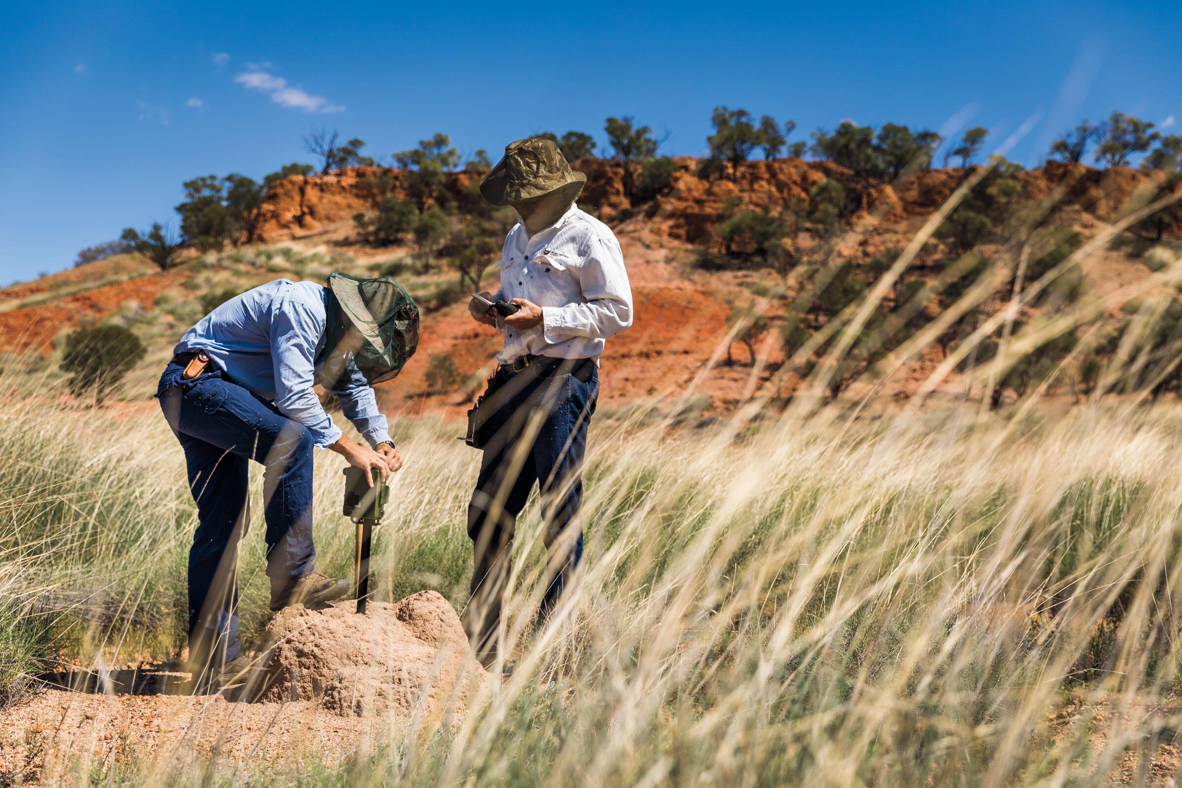 Patrick Webster y Leseberg instalan una de varias grabadoras que controlan la actividad de las aves en la reserva.