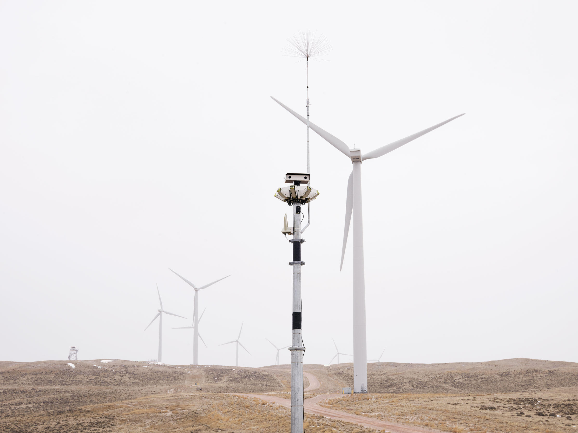 At Duke's Top of the World wind farm outside Casper, Wyoming, an IdentiFlight unit scans the horizon for raptors. Its AI software can pick out eagles at risk of collision and trigger a turbine curtailment. Spencer Lowell