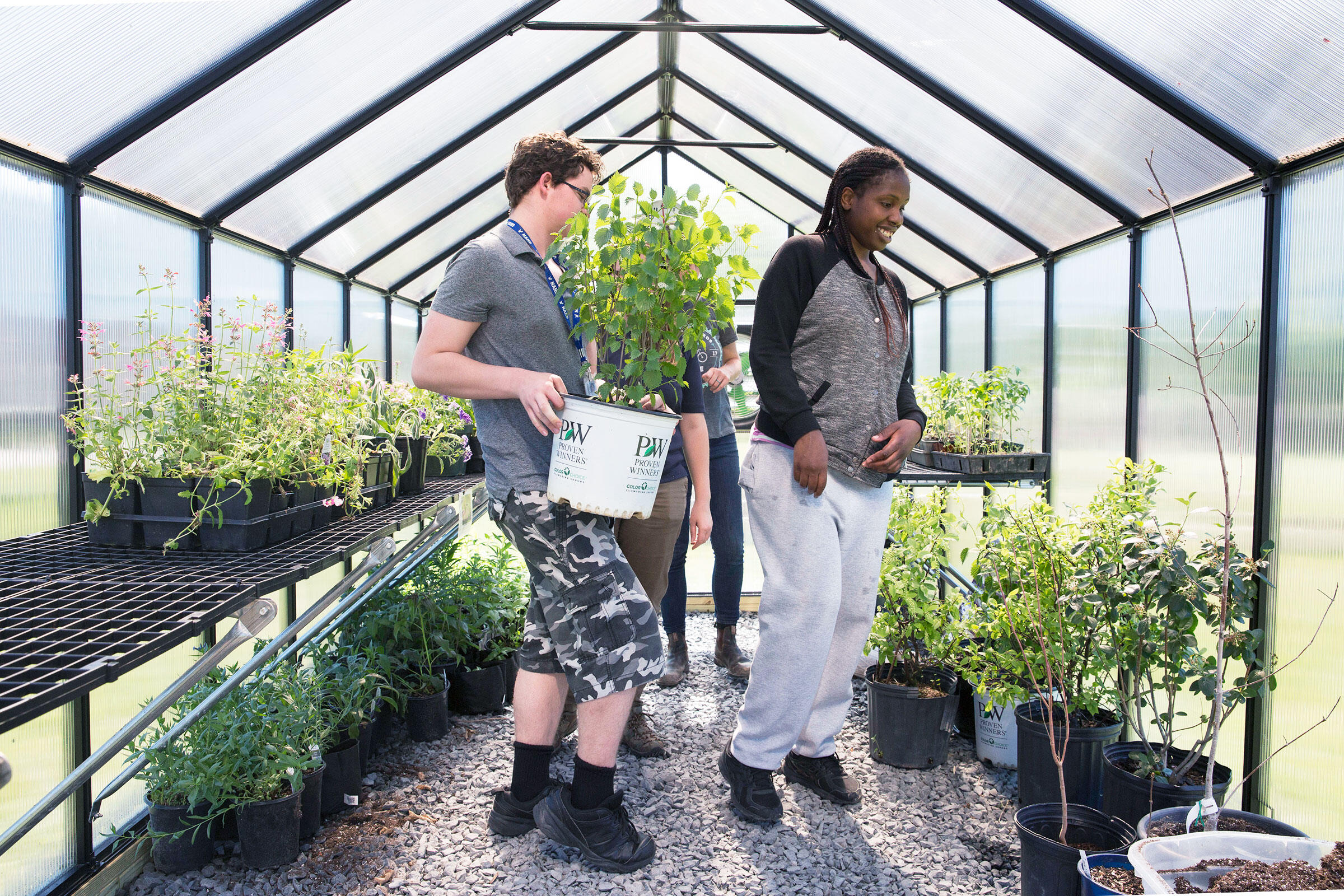 Nathan Cochran and Erika Turner working in the greenhouse at Norristown Area High School. Rachel Wisniewski
