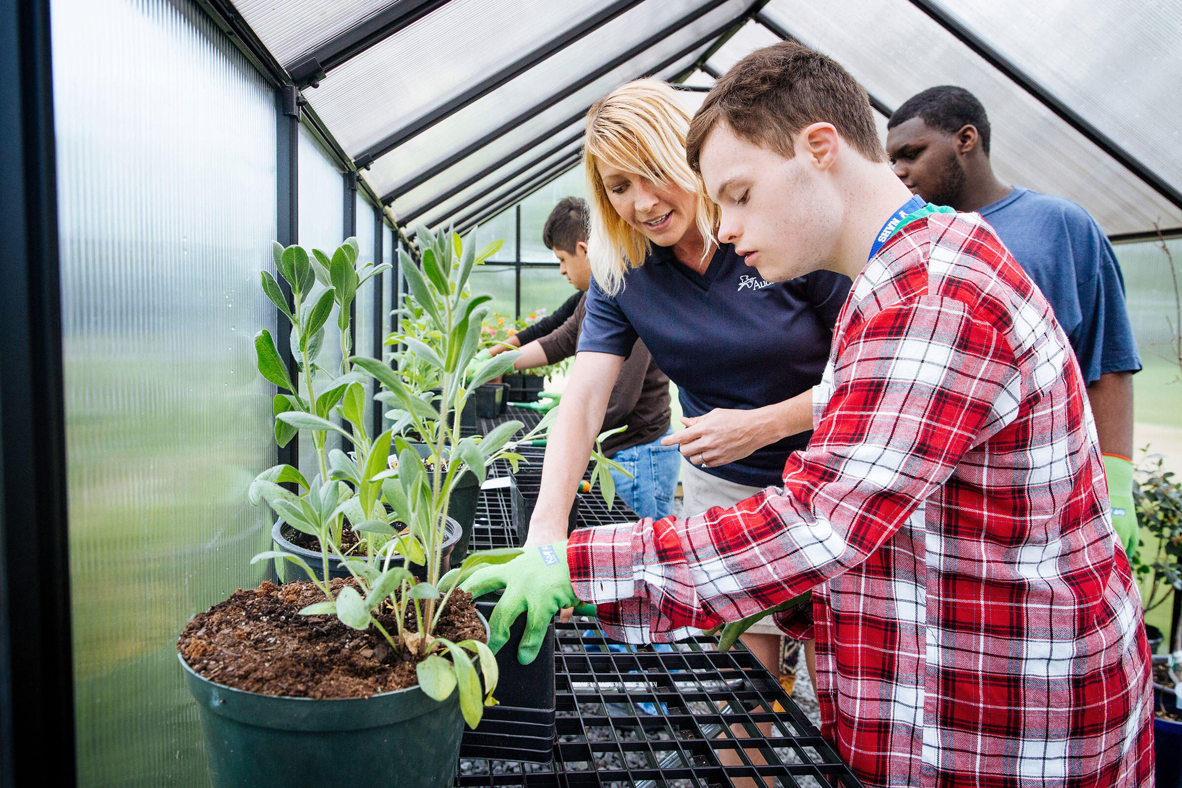 Barron helps Mahon re-pot plants at Norristown Area High School. Mahon is part of the job skills program, which has incorporated the greenhouse into its lesson plans. Rachel Wisniewski