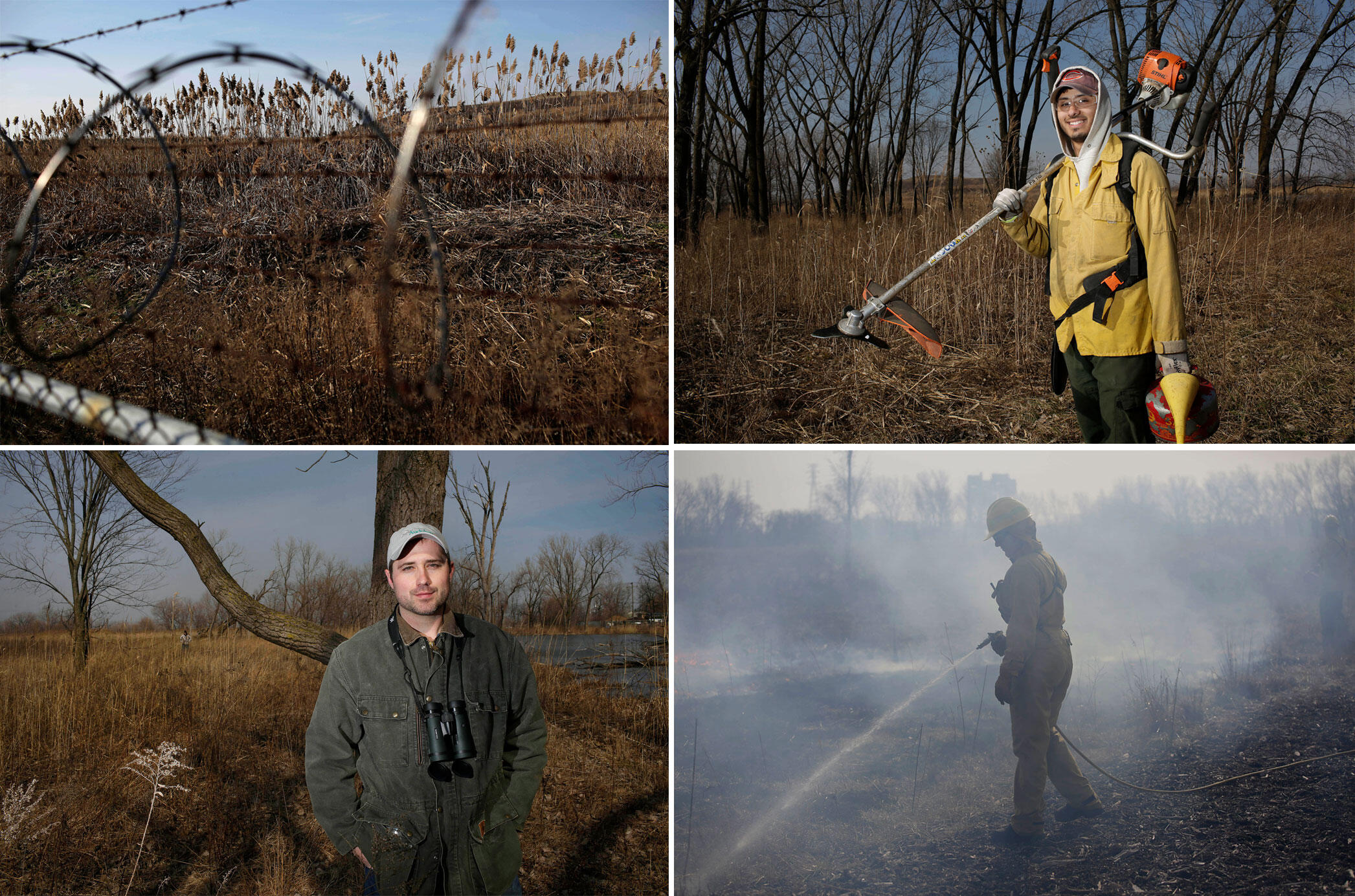 Clockwise from top left: Phragmites; Juan Rosales of the fire crew; worker puts out a hot spot; Nat Miller of Audubon Great Lakes. Photos: Joshua Lott