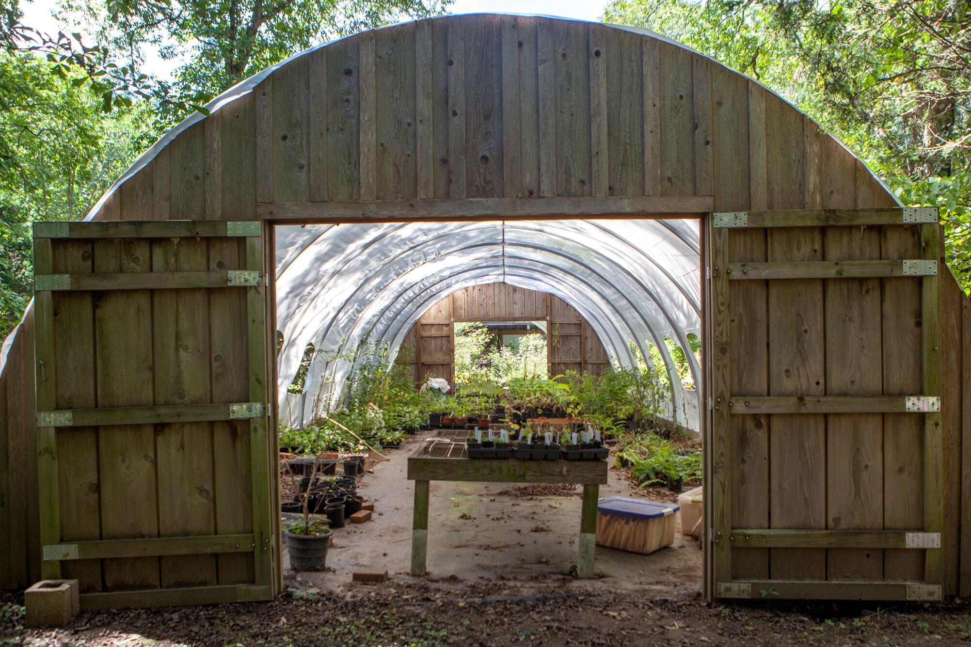 The Strawberry Plains native plants nursery. Camilla Cerea/Audubon