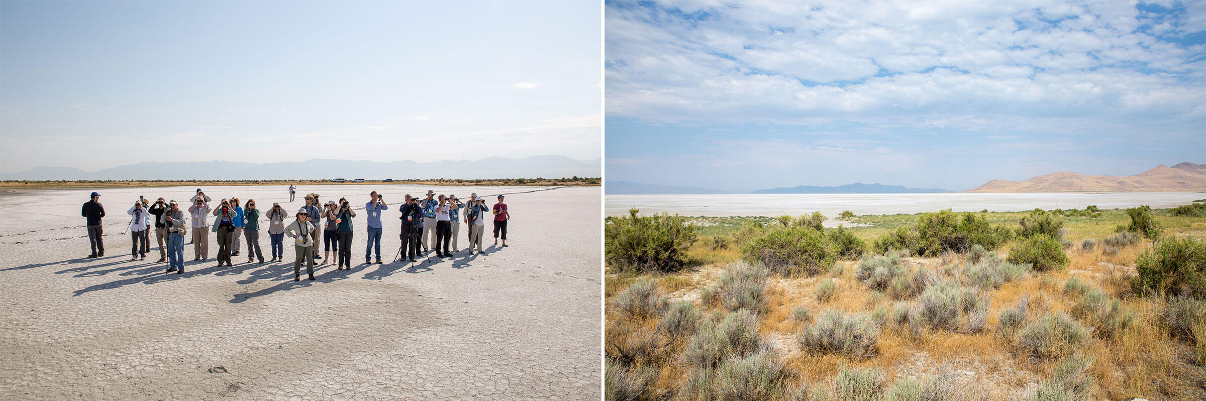 From left to right: Audubon staff and chapter members visit Gillmor Sanctuary; looking across the sanctuary to the disappearing Great Salt Lake. Camilla Cerea/Audubon