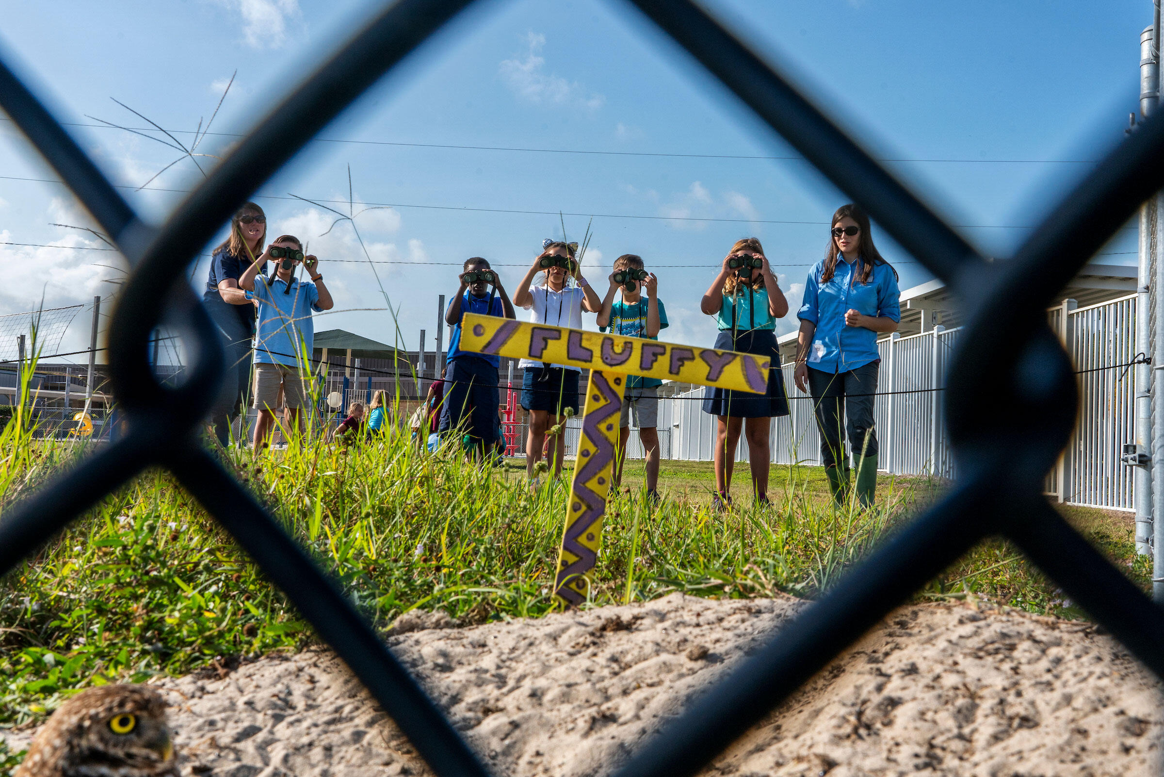 Students at Tommie Barfield Elementary monitor the owls on the school property. Karine Aigner