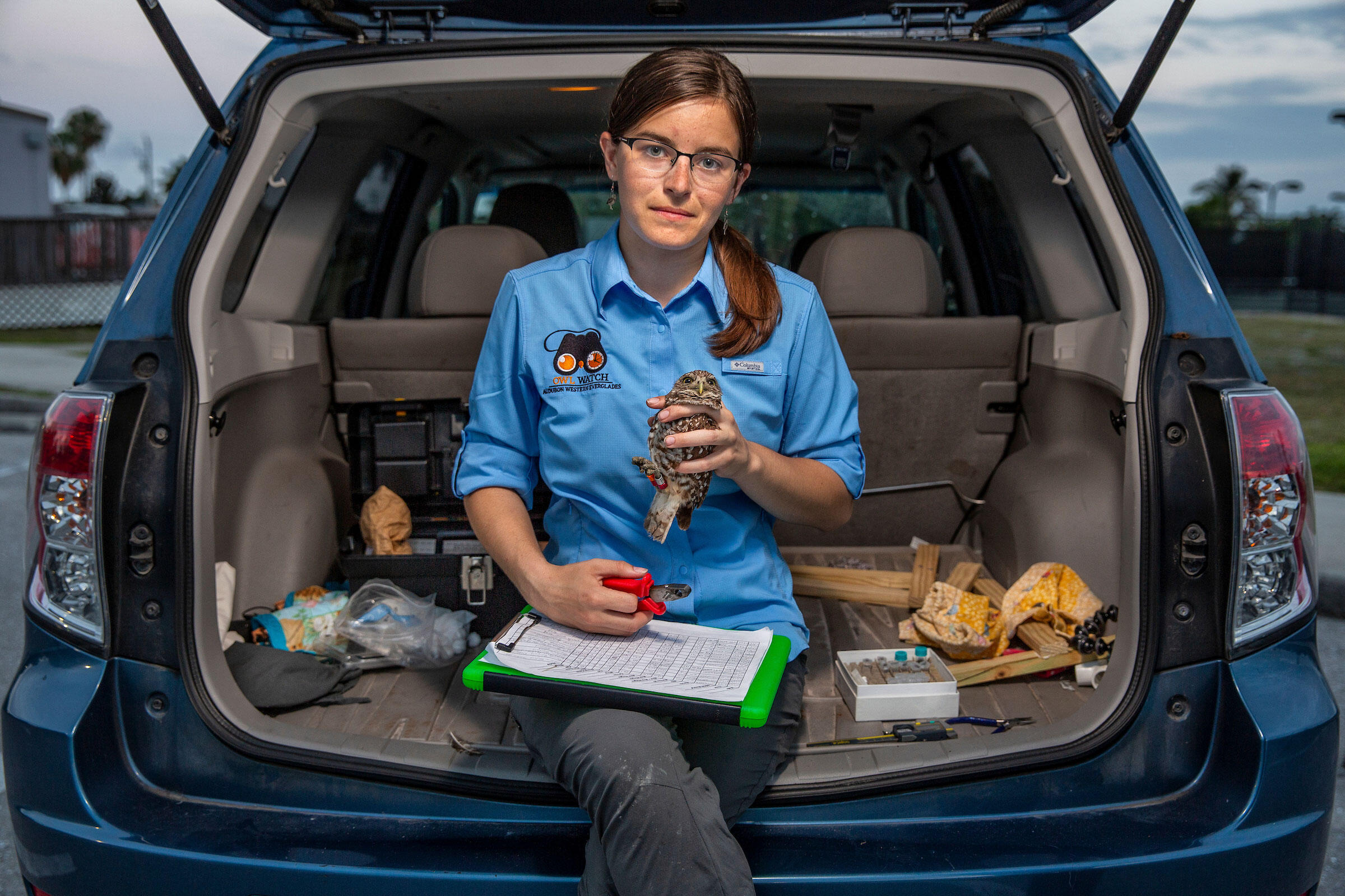 Biologist Allison Smith's car serves as a mobile workspace for monitoring owls on Marco. She temporarily transfers birds she captures to the back, where she weighs, measures, and bands them before returning them to their burrows. Karine Aigner