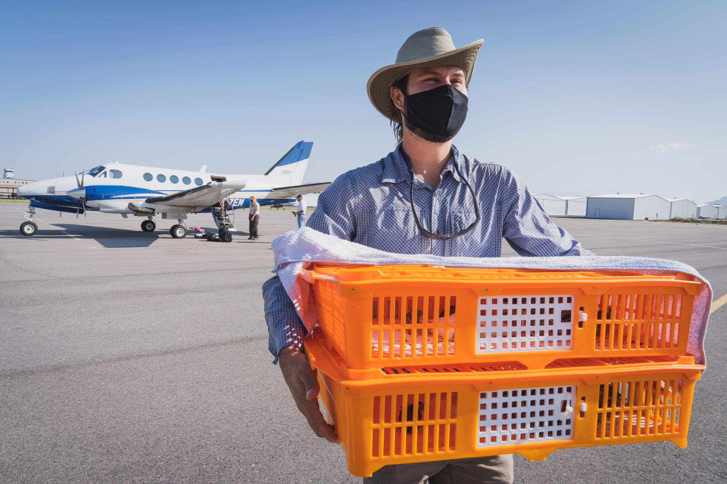 Chicks born in Oklahoma arrive at an airport near Tucson. Pilots, volunteers with the nonprofit Lighthawk, donate their planes and time to fly the chicks to their new home. Morgan Heim