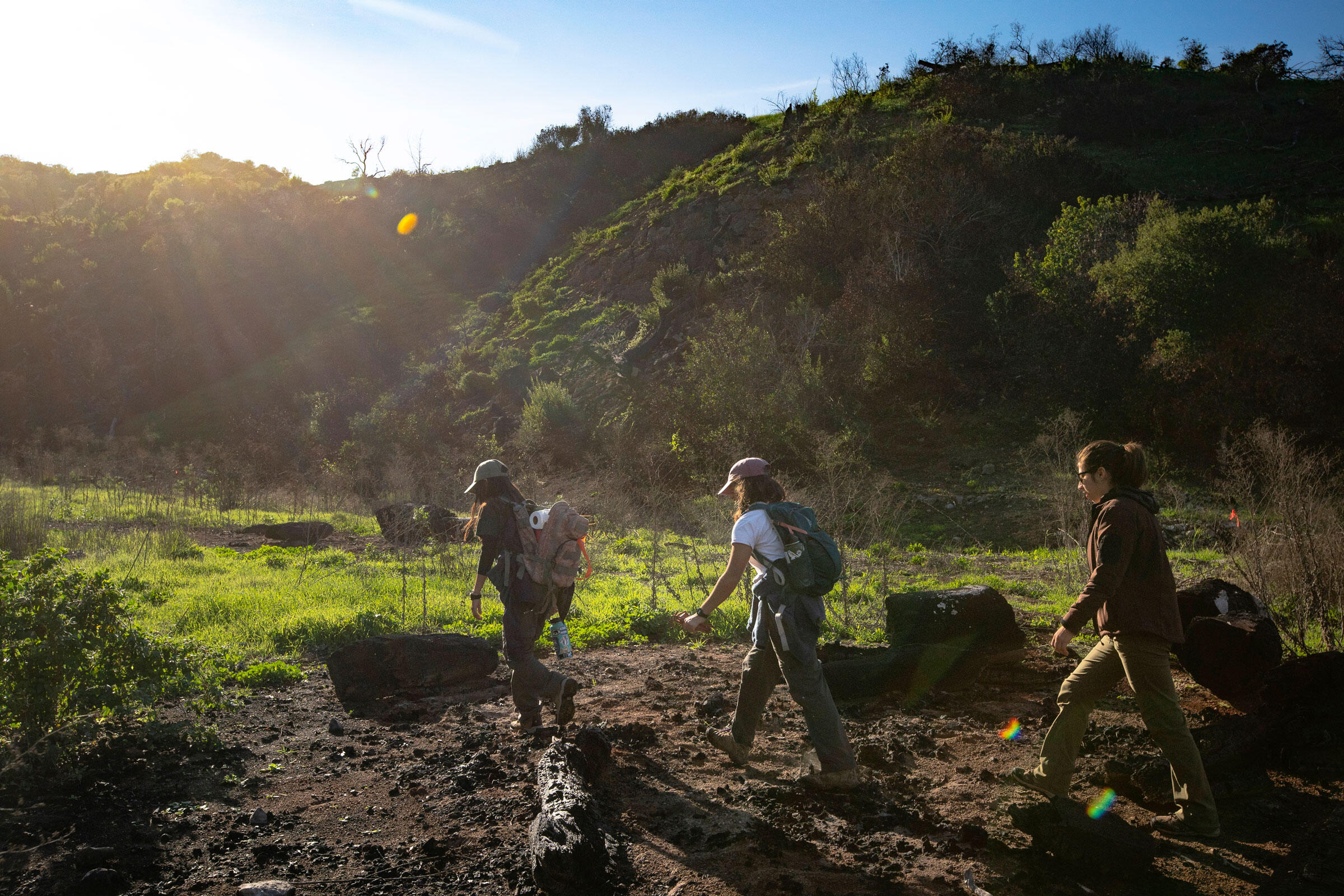 Minerva Rivera, Carina Motta, and Evelyn Bobadilla trek through the 260-acre burn scar on California's Santa Cruz Island. Morgan Heim