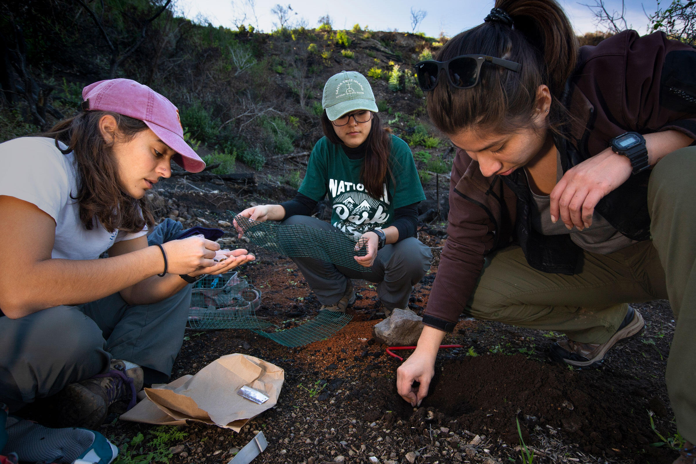 The three undergraduate field techs visited the island each weekend through the winter, between classes and part-time jobs. Morgan Heim