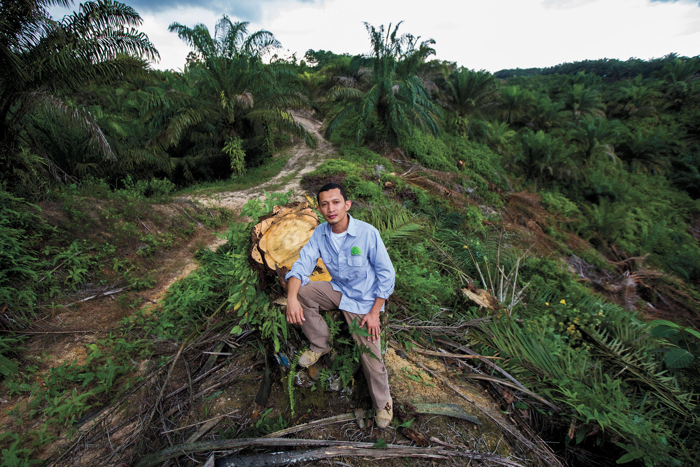 Rudi Putra, who accompanies his rangers on 15-day monthly patrols, has dismantled 26 illegal plantations—roughly 7,500 acres of oil palm. Paul Hilton