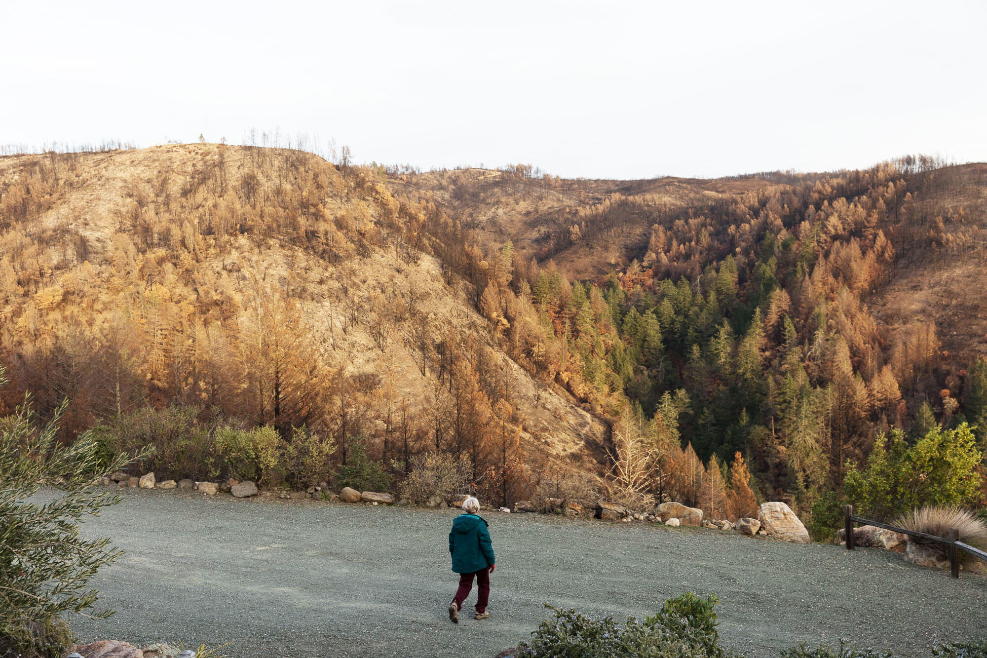 """Christine Engel strides in front of scorched hills. """"I haven't lost my love affair with dynamic California,"""" she says, despite the fall's destructive wildfires. Ryan Young"""