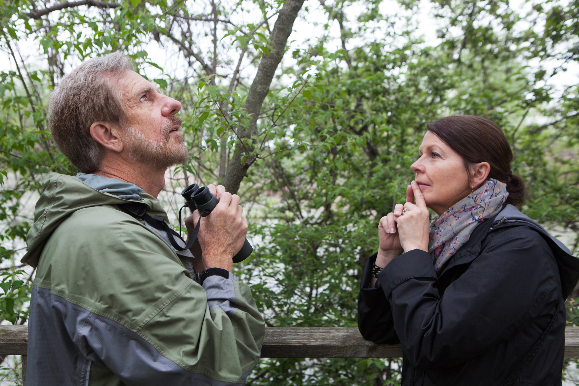 Birding power couple Kenn and Kimberly Kaufman take a break from their busy festival schedules to hit the boardwalk and spy on magnolias (Kim's favorite wood warbler). Camilla Cerea/Audubon