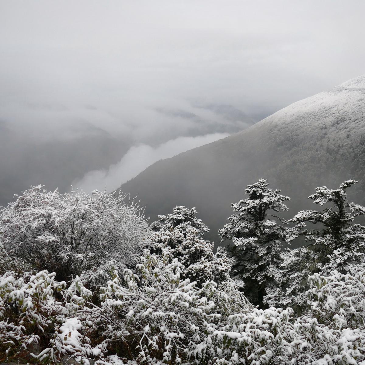 A winter wonderland on the approach to Balang Shan Pass. Noah Strycker
