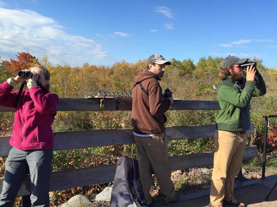 Kaija Gahm, Reed Turner, and Alex Lamoreaux, an employee at Hawk Ridge Bird Observatory, count migrating species during a hawk watch. Karen Stubenvoll/Hawk Ridge Bird Observatory