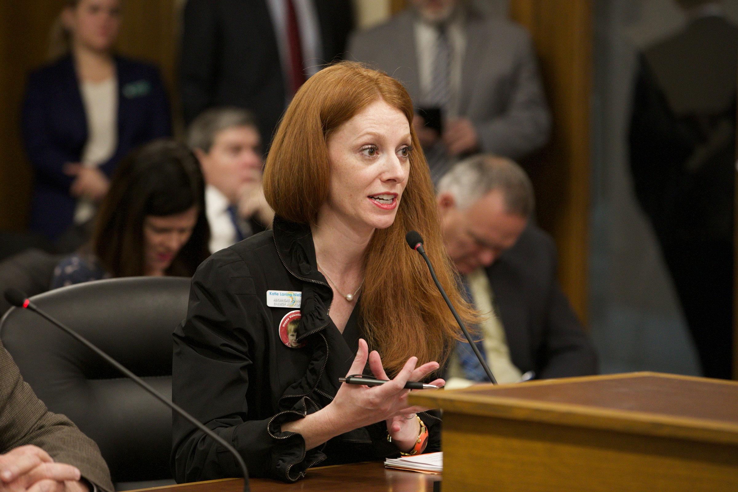 Katie Niebaum, director of Arkansas Advanced Energy Association. Lauren McCullough