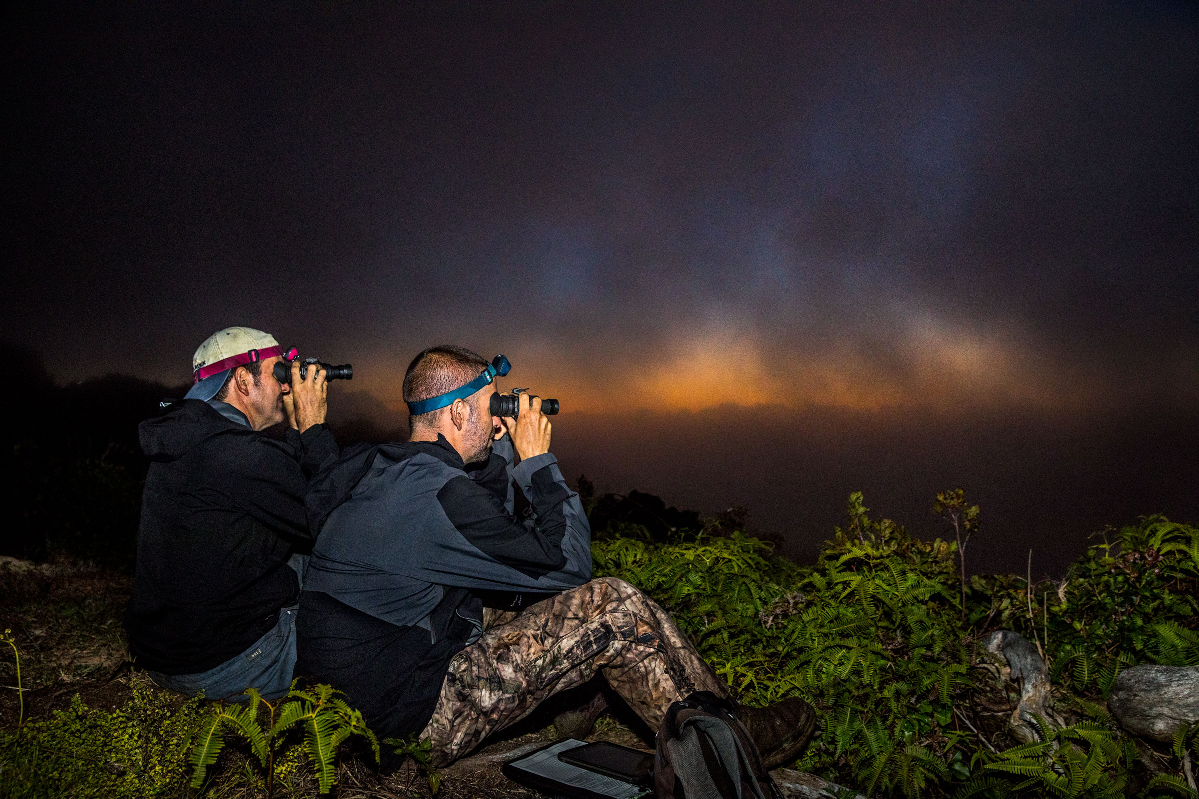 Raine and writer Paul Kvinta use night-vision goggles to search the twilight for Hawaiian Petrels coming in to feed their nestlings. Tom Fowlks