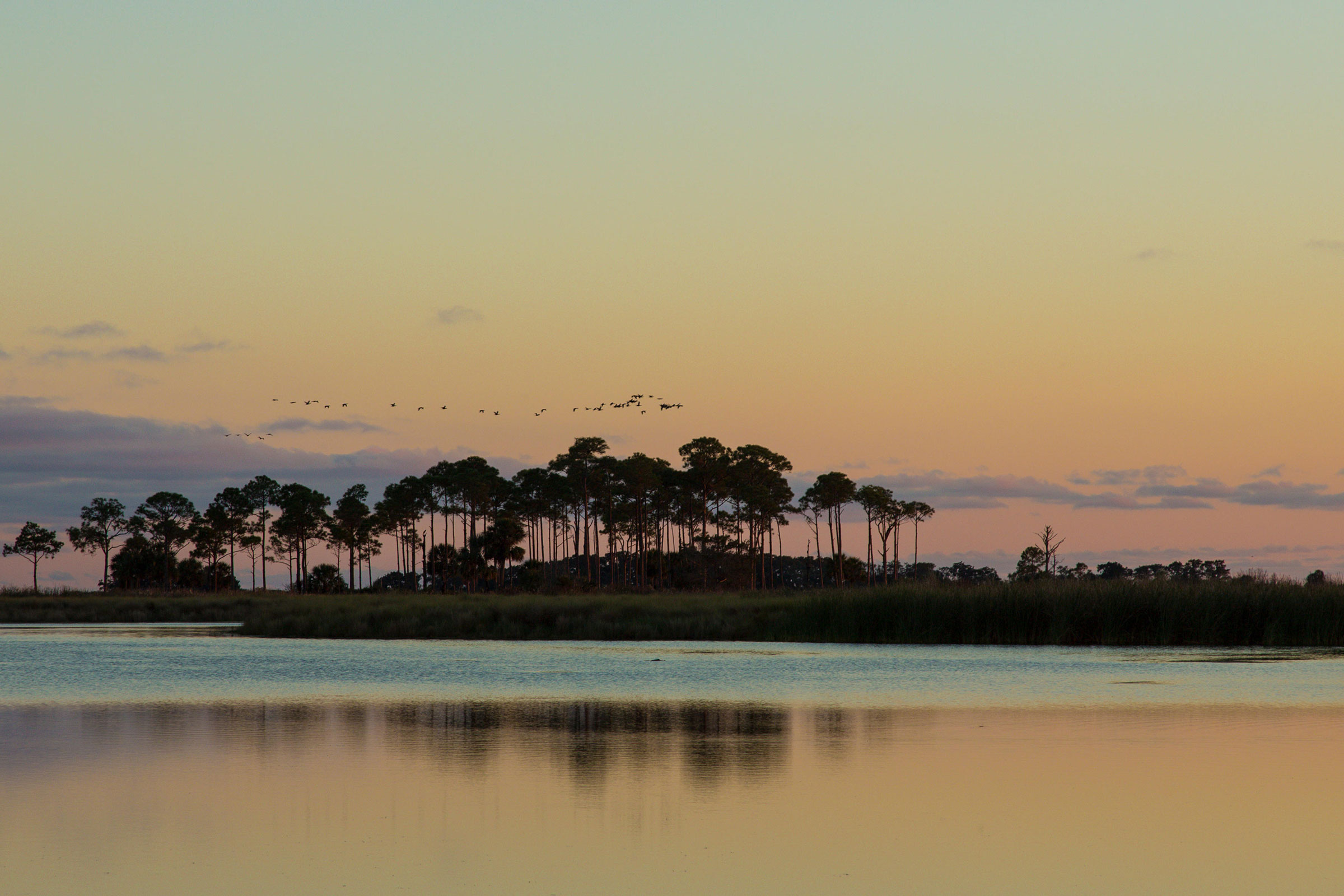 Dusk over St. Marks National Wildlife Refuge in Florida