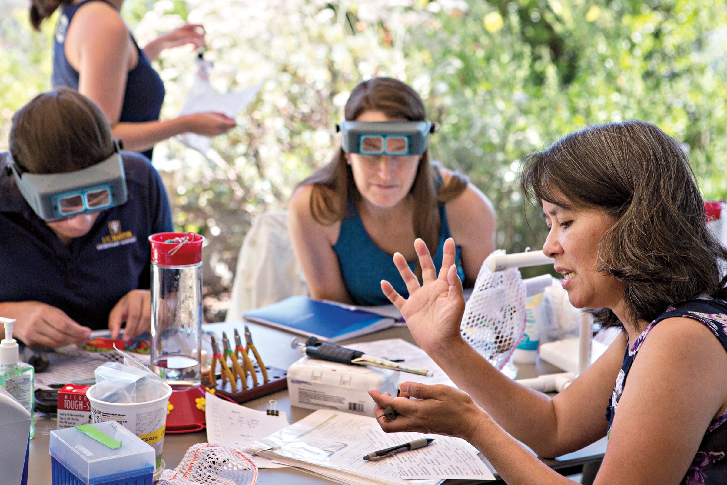 Lisa Tell y su equipo en la Universidad de California en Davis usan comederos inteligentes     para entender los hábitos de alimentación urbanos.