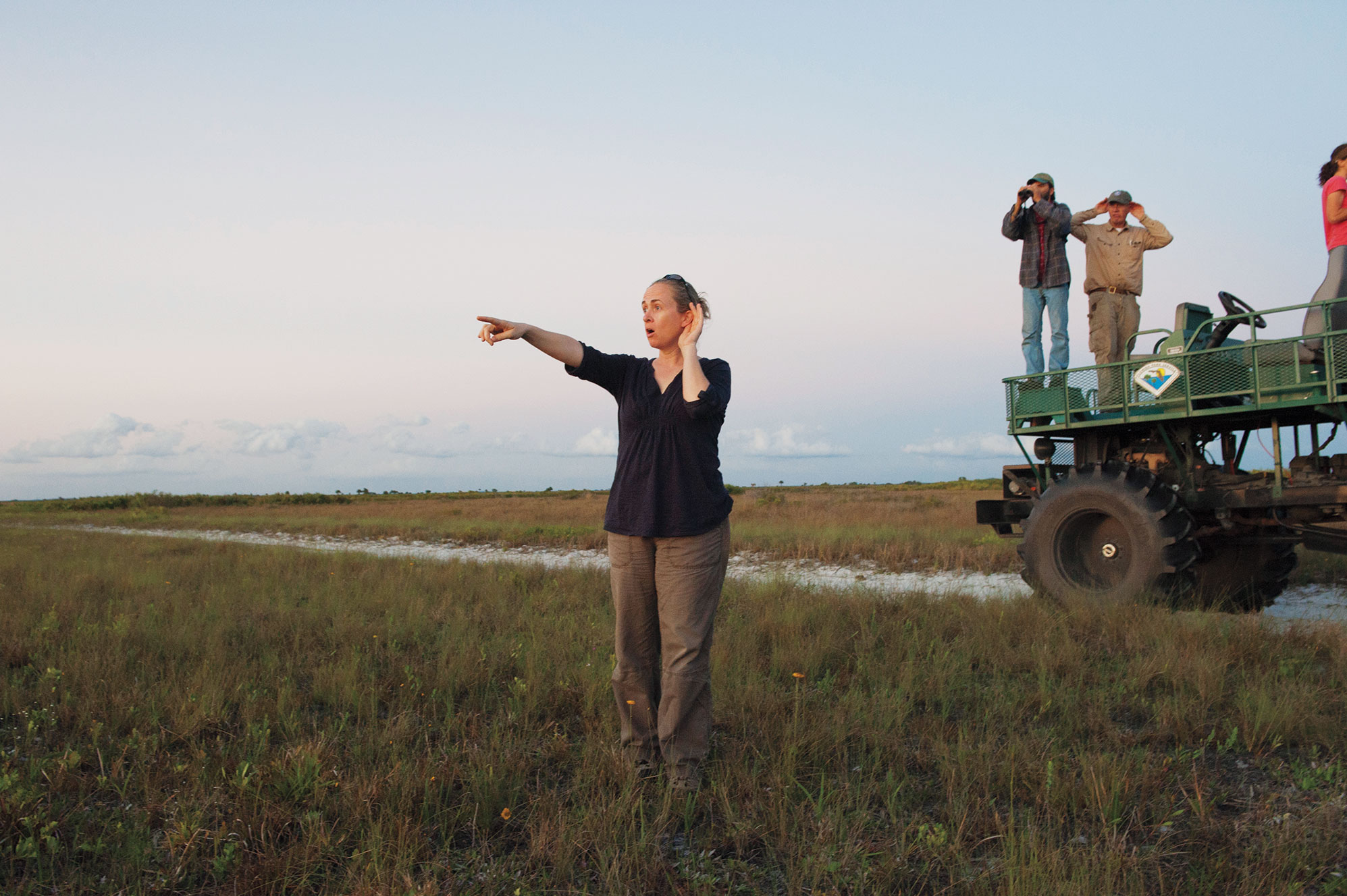 At Florida's Kissimmee Prairie Preserve State Park, Sue Miller attempts to locate a Florida Grasshopper Sparrow by listening for its song. This hard-to-find bird is located primarily via its song. Joel Sartore