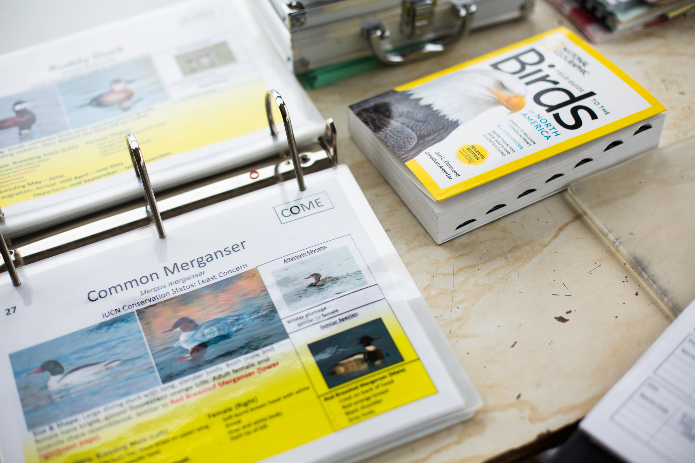 A binder in the Bird Shack contains detailed information about the 42 avian species most likely to land in the pit, enabling surveyors to make quick, accurate IDs. Celia Talbot Tobin