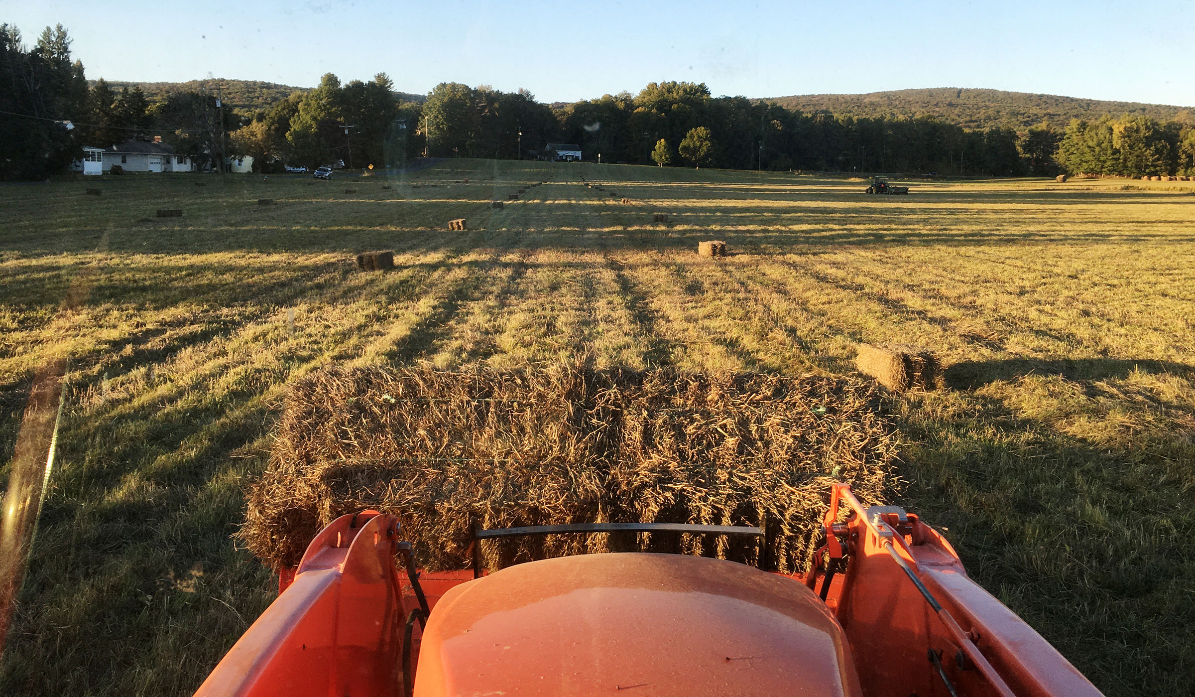 A tractor loads hay in September 2020 at Musante Farm, on a field cut later in the season to allow birds to fledge.