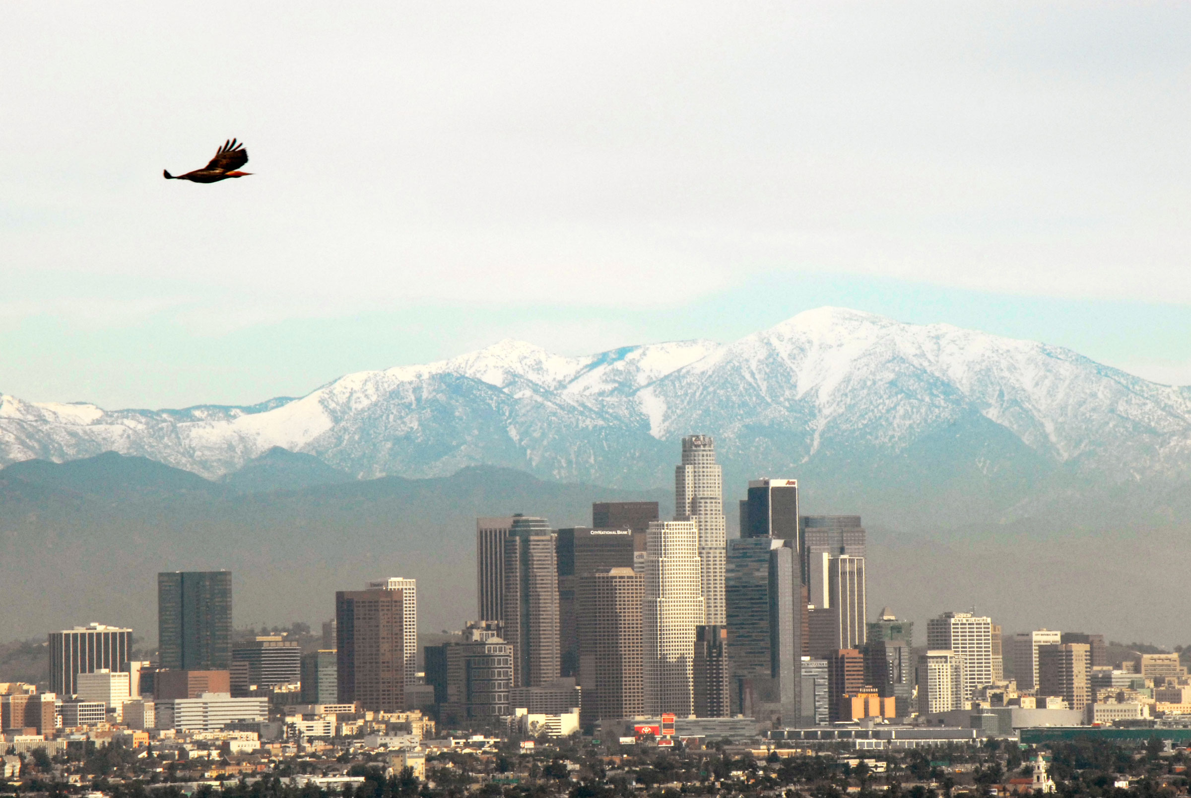 In the 1950s and 1960s, people in Los Angeles breathed some of the dirtiest air in the world. Today, thanks to the Clean Air Act, it's much cleaner—although there's still more work to do. Ramon Preciado/Alamy