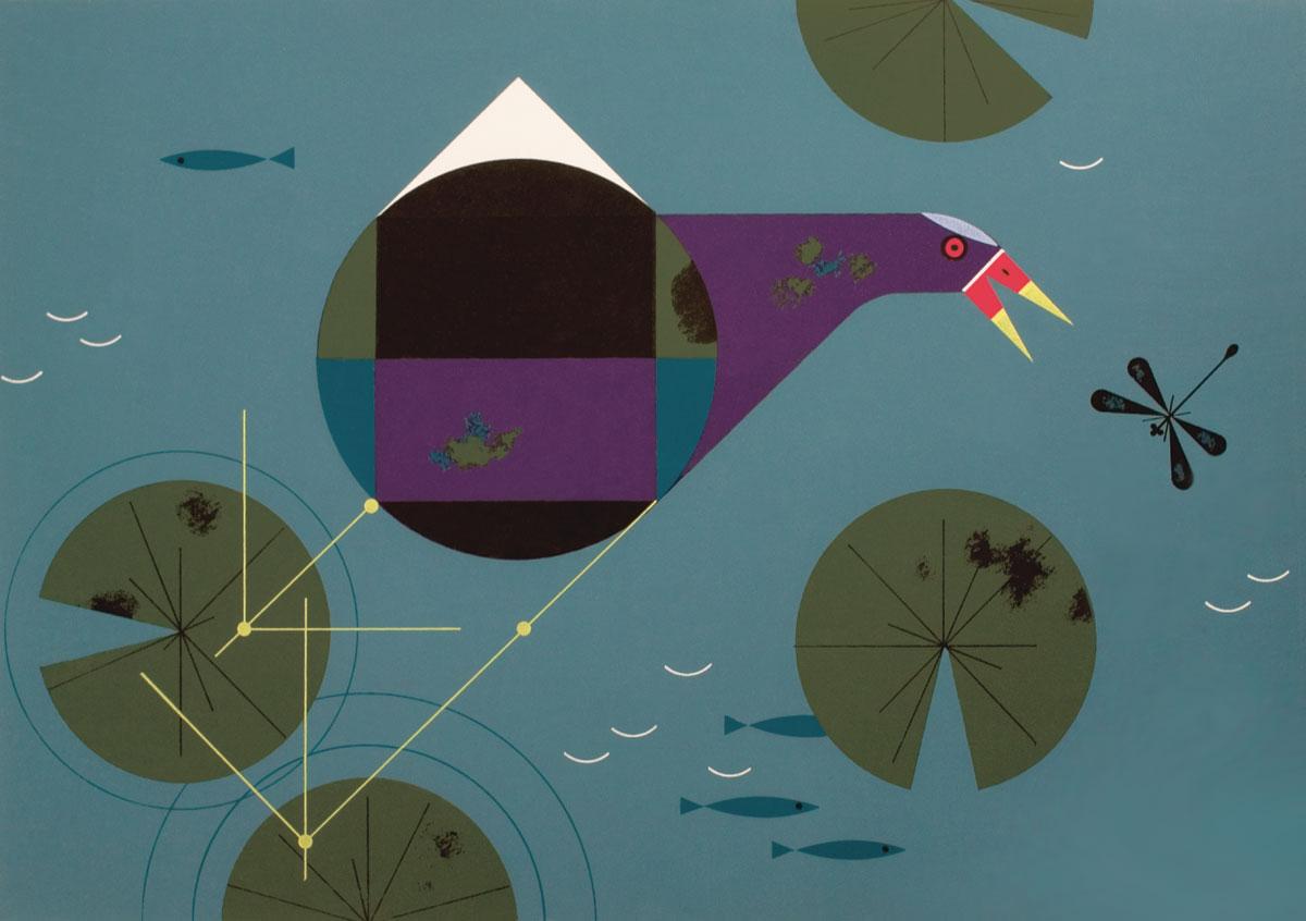 Purple Gallinule. Illustration: Charley Harper