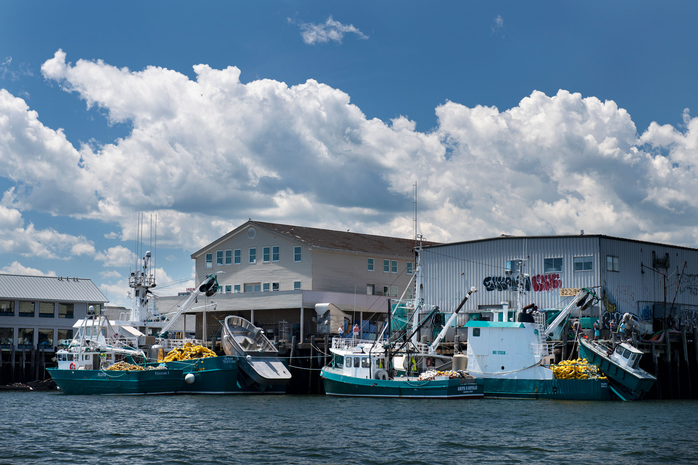 Purse seiner boats, used to catch herring, dock in Portland, Maine. Chris Linder