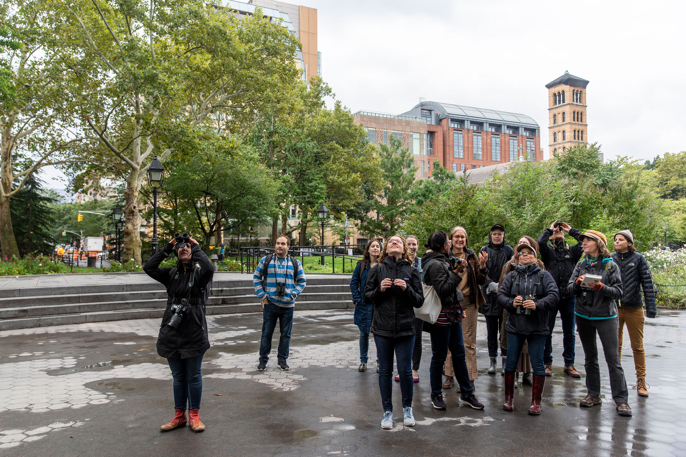 On an October walk in New York City's Washington Square Park, the group recorded the site's first-ever Belted Kingfisher sighting, along with six Brown Creepers and four woodpecker species. Eva Deitch