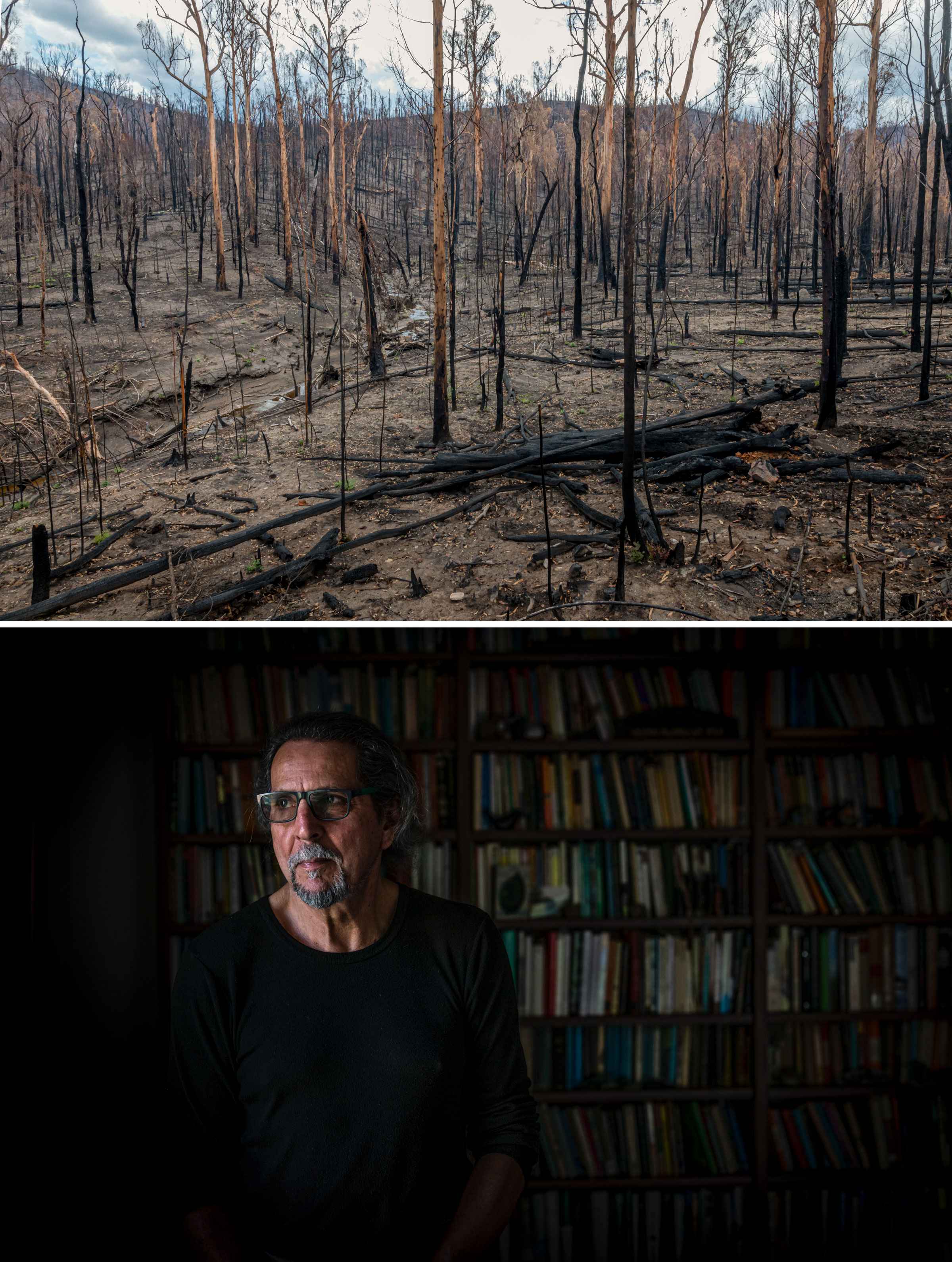 """From top: Bushfires torched gum-tree stands across much of the birds' range last year. Philosopher Glenn Albrecht coined the term """"solastalgia"""" to describe the distress caused by environmental change. Photos: Doug Gimesy"""