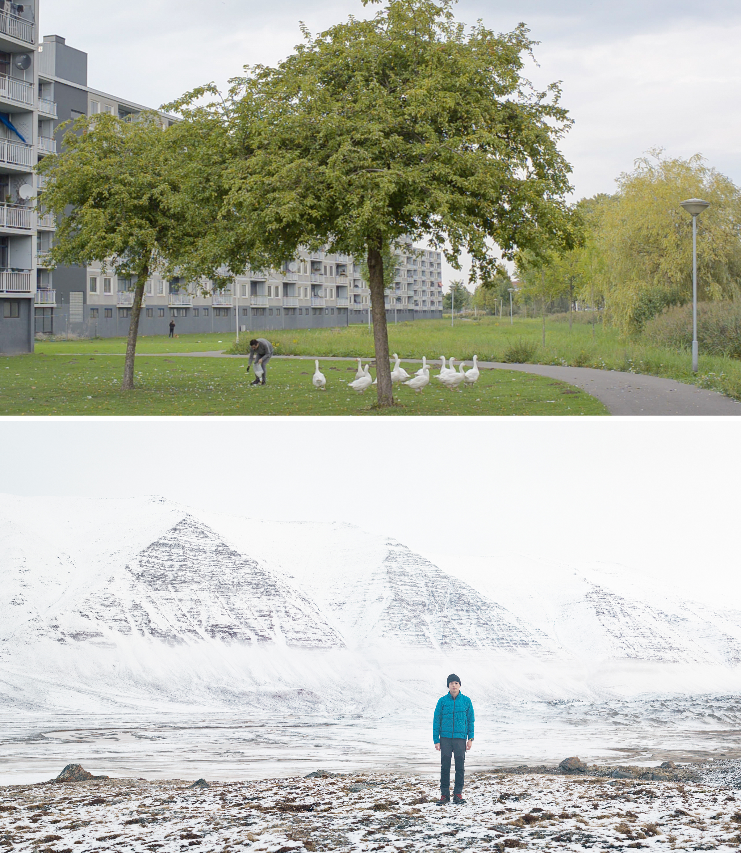 Artist Sheng-Wen Lo collects down feathers (top) in his home city of Breda, Netherlands. A self-portrait (bottom) of Lo hiking in the Arctic in a jacket filled with down he collected. Photos: From Down (2017), video stills; ©Sheng-Wen Lo