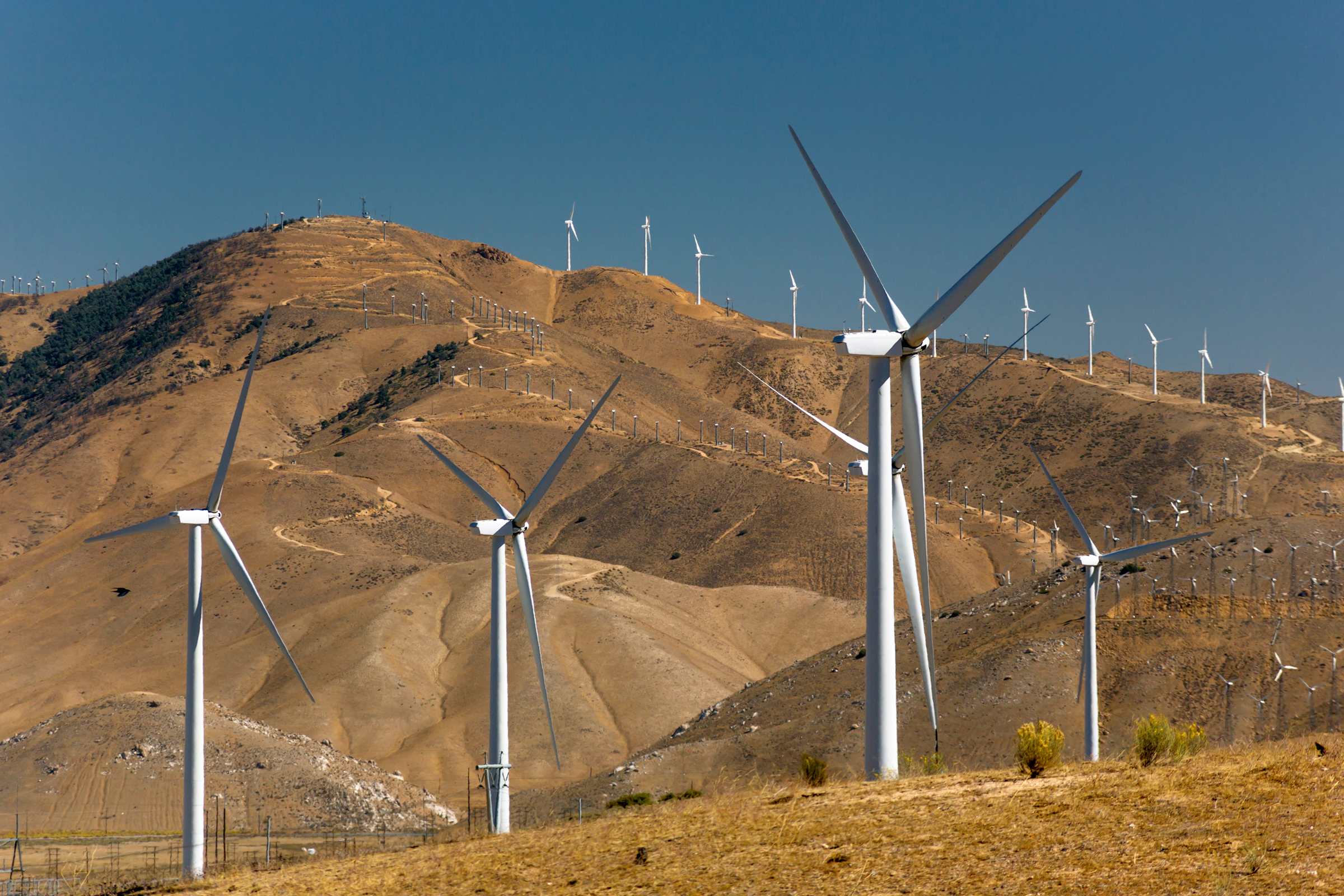 Three wind turbines stand tall in the foreground before rows of more turbines lining the Tehachapi Mountains. Russell Kord/Alamy