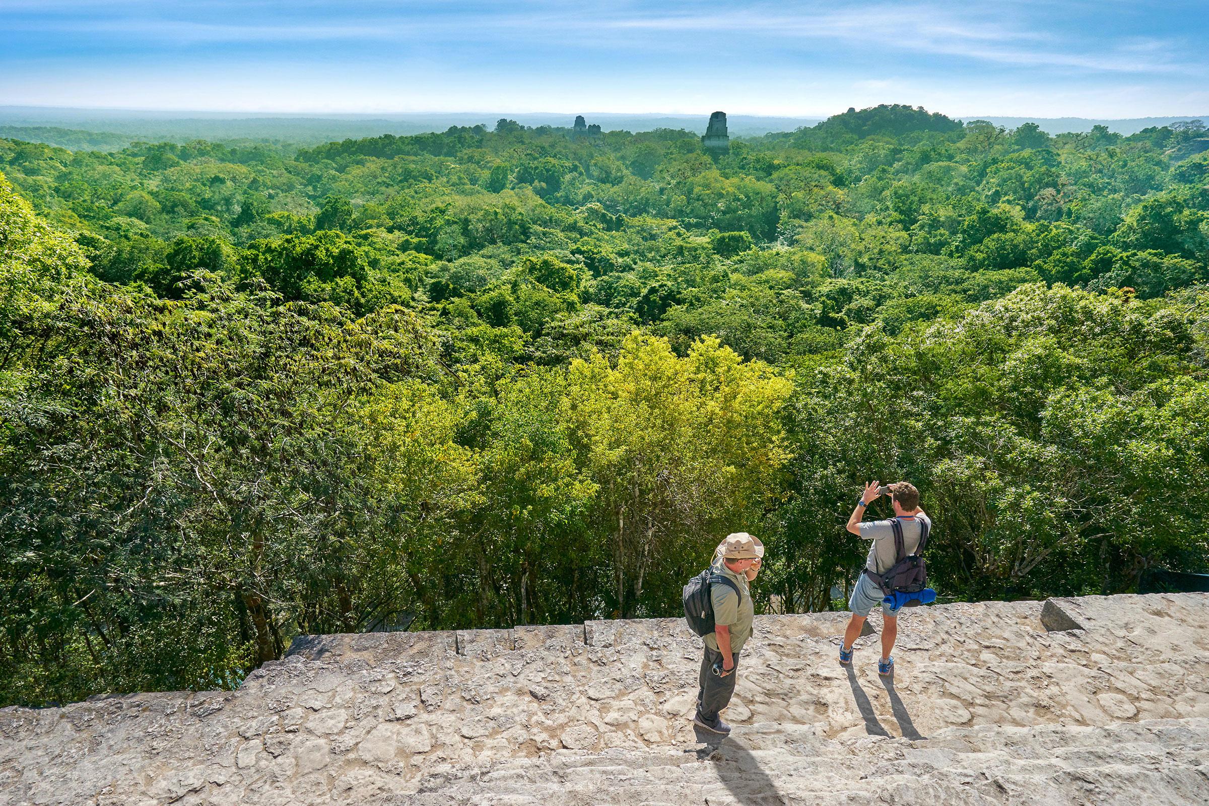 Tourists on the top of Temple IV, Ancient Maya Ruins, Tikal National Park, Yucatan, Guatemala. Jan Wlodarczyk/Alamy