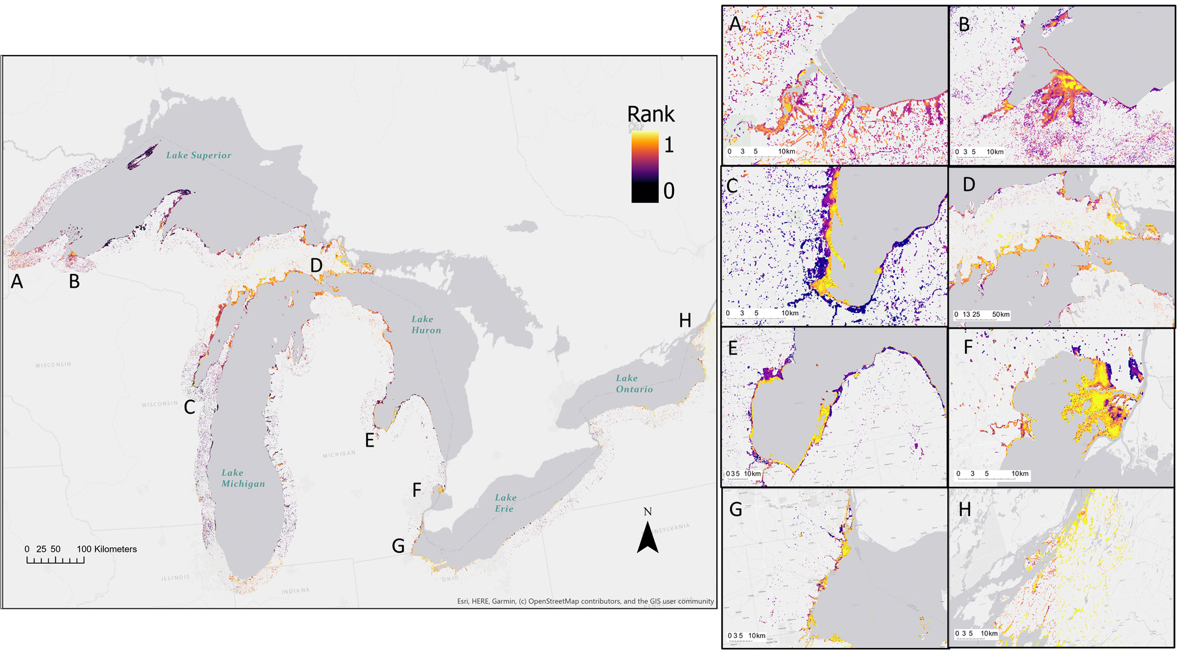 Data gathered across 14 different species shows which coastal habitats surrounding the Great Lakes should be prioritized. Data Visualization: Joanna Grand et al. 2020/Audubon