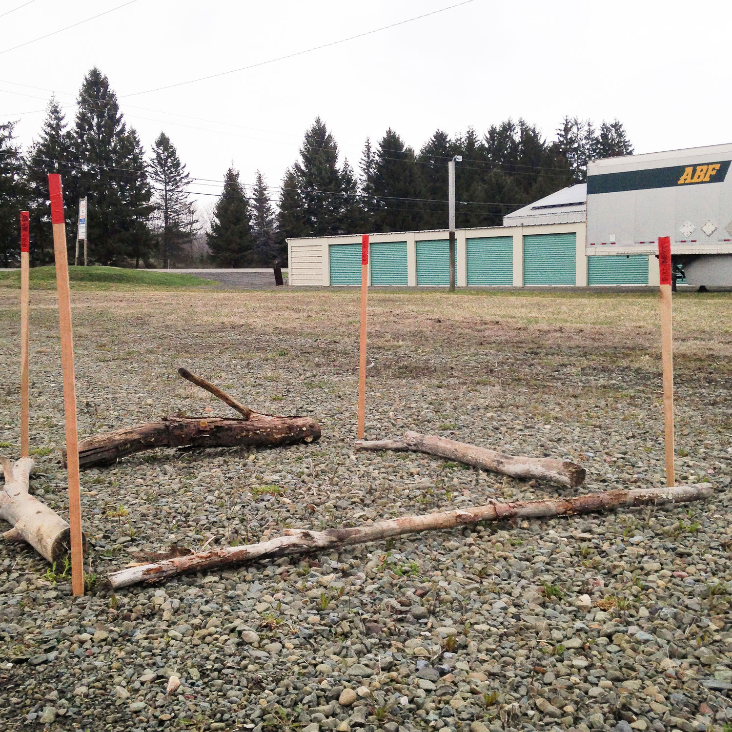 To ensure the nest was visible to drivers, Groo staked it with tall poles capped by red markers. She also placed logs around the perimeter, figuring that if someone came too close they'd bump into those first. Melissa Groo