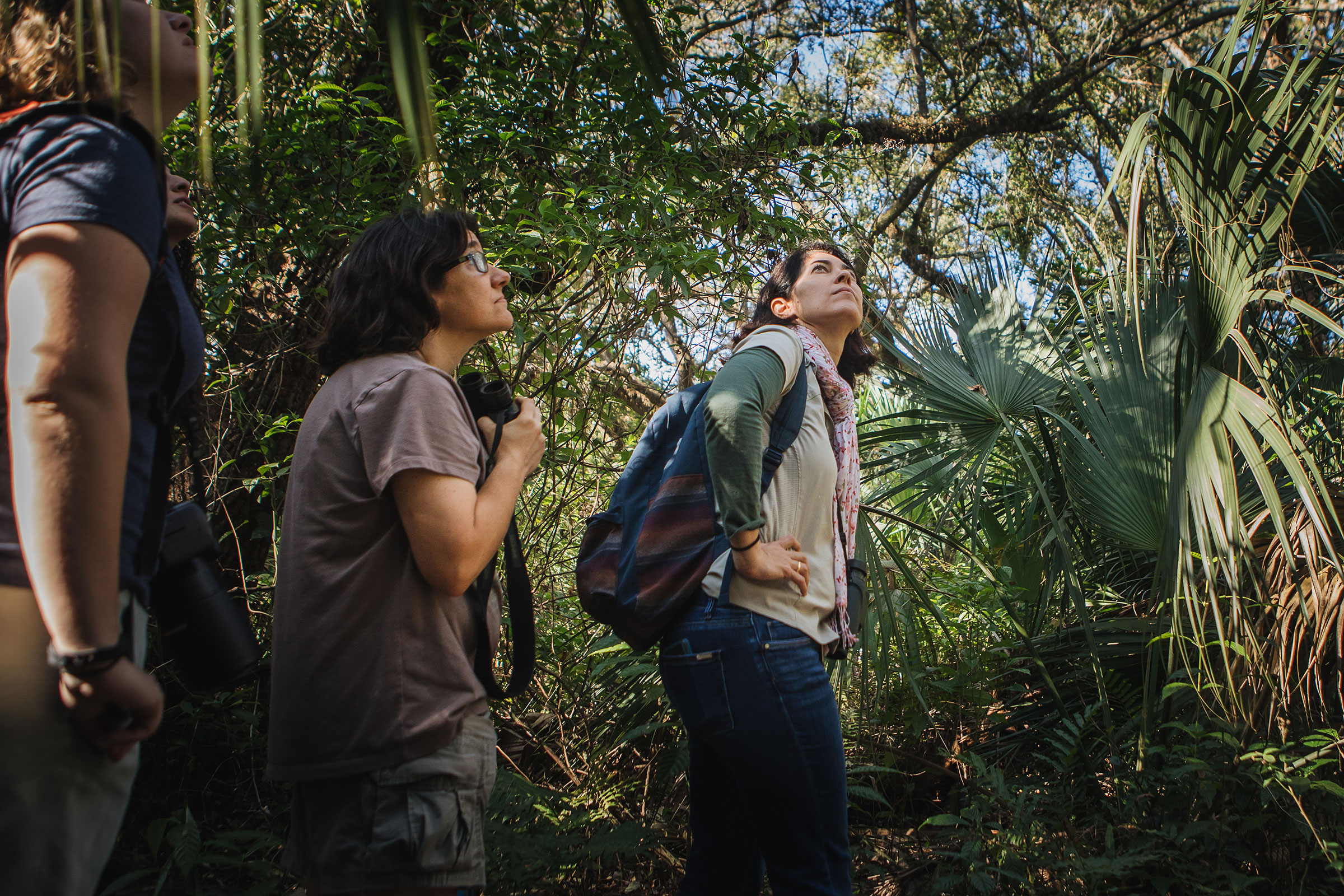The Phoebes consider themselves serious birders who are interested in science and conservation, but they also make sure to keep their walks light and friendly. Here they explore Florida's Kendall Indian Hammocks Park. Jayme Gershen