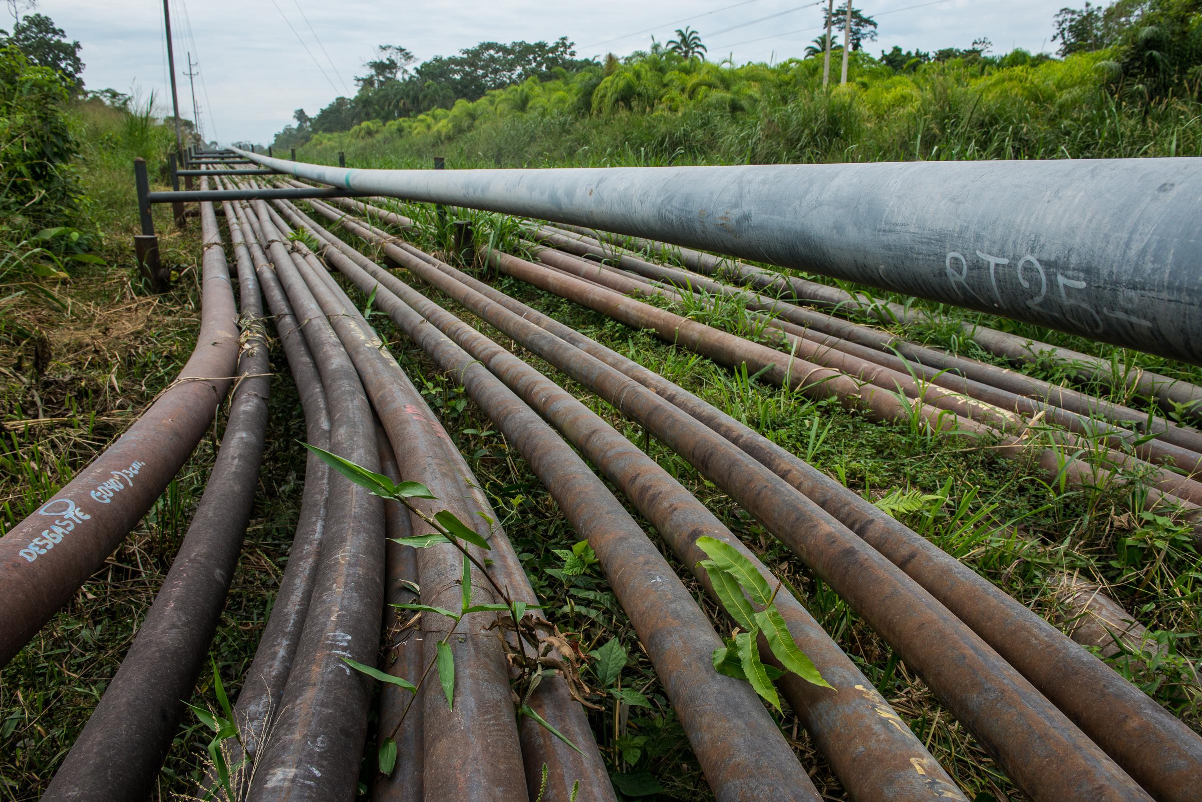 Pipelines originating from a Rio Napo oil company installation near Sacha Norte Uno en route from Coca to Pompeya, north of Yasuni National Park. Neil Ever Osborne