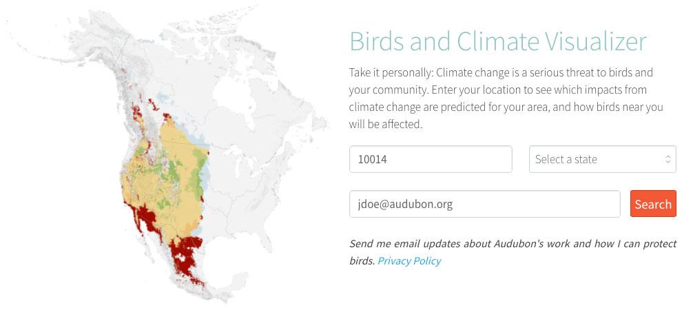 Screenshot of Birds & Climate Visualizer.