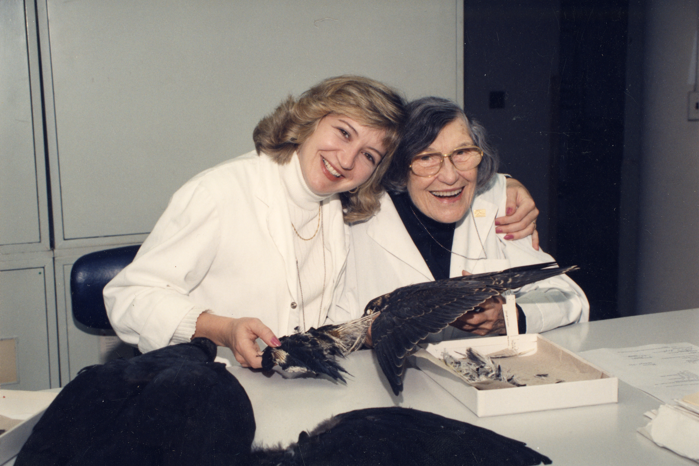 Carla Dove, left, with Laybourne at the Smithsonian, where Dove now runs the Feather Identification Lab using the methods that Laybourne pioneered. Courtesy of Smithsonian Institution Archives
