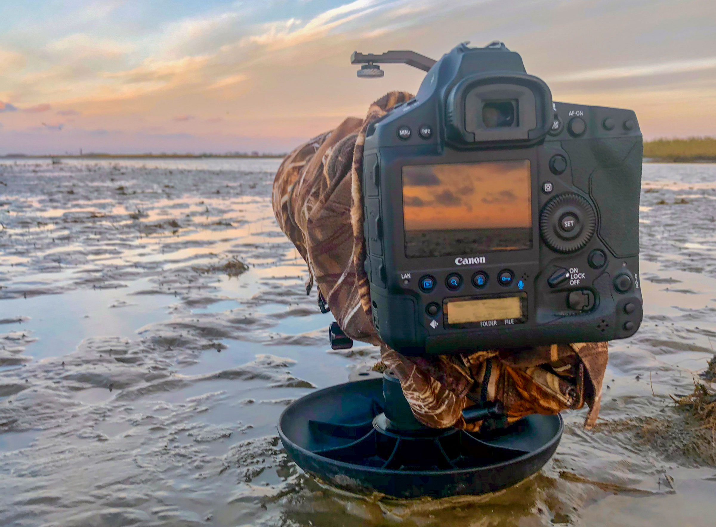 """Tim Timmis uses a Skimmer ground pod to get low-level, eye-to-eye shots. """"Birds don't recognize you as a person when lying down, and they will walk right up to you,"""" he says."""