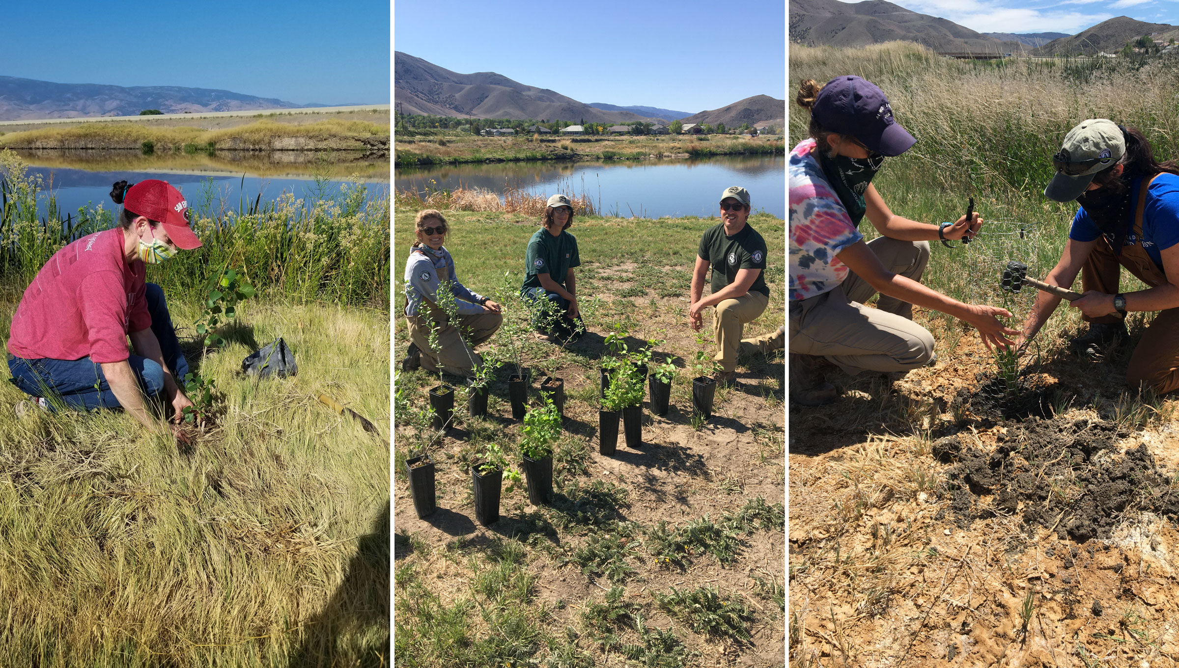 Truckee Meadows Parks Foundation, in partnership with Lahontan Audubon Society and AmeriCorps, plant native species in Truckee Meadows Nature Study Area in Reno, Nevada. Courtesy of Truckee Meadows Parks Foundation