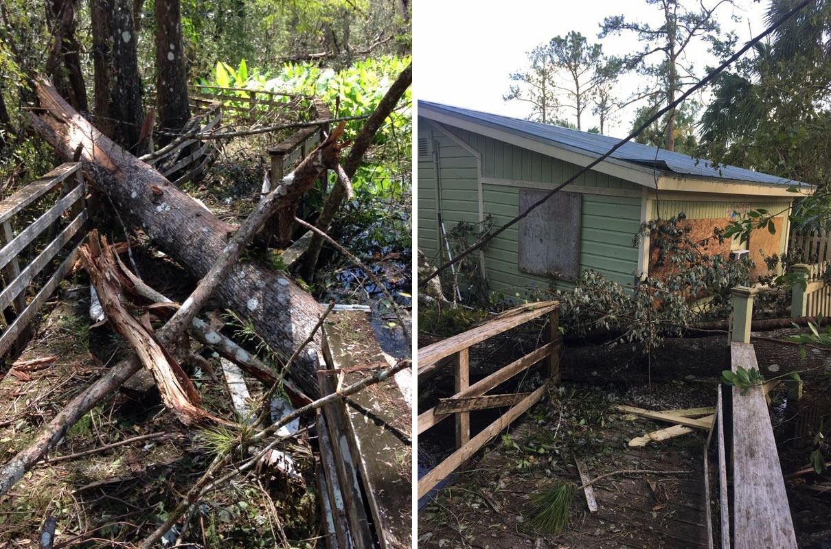 On the left: Some cypress trees came down, damaging railings. On the right: The Bunting House doesn't have electricity anywhere at the moment and just the rails are damaged. Photos: Courtesy of Audubon's Corkscrew Swamp Sanctuary
