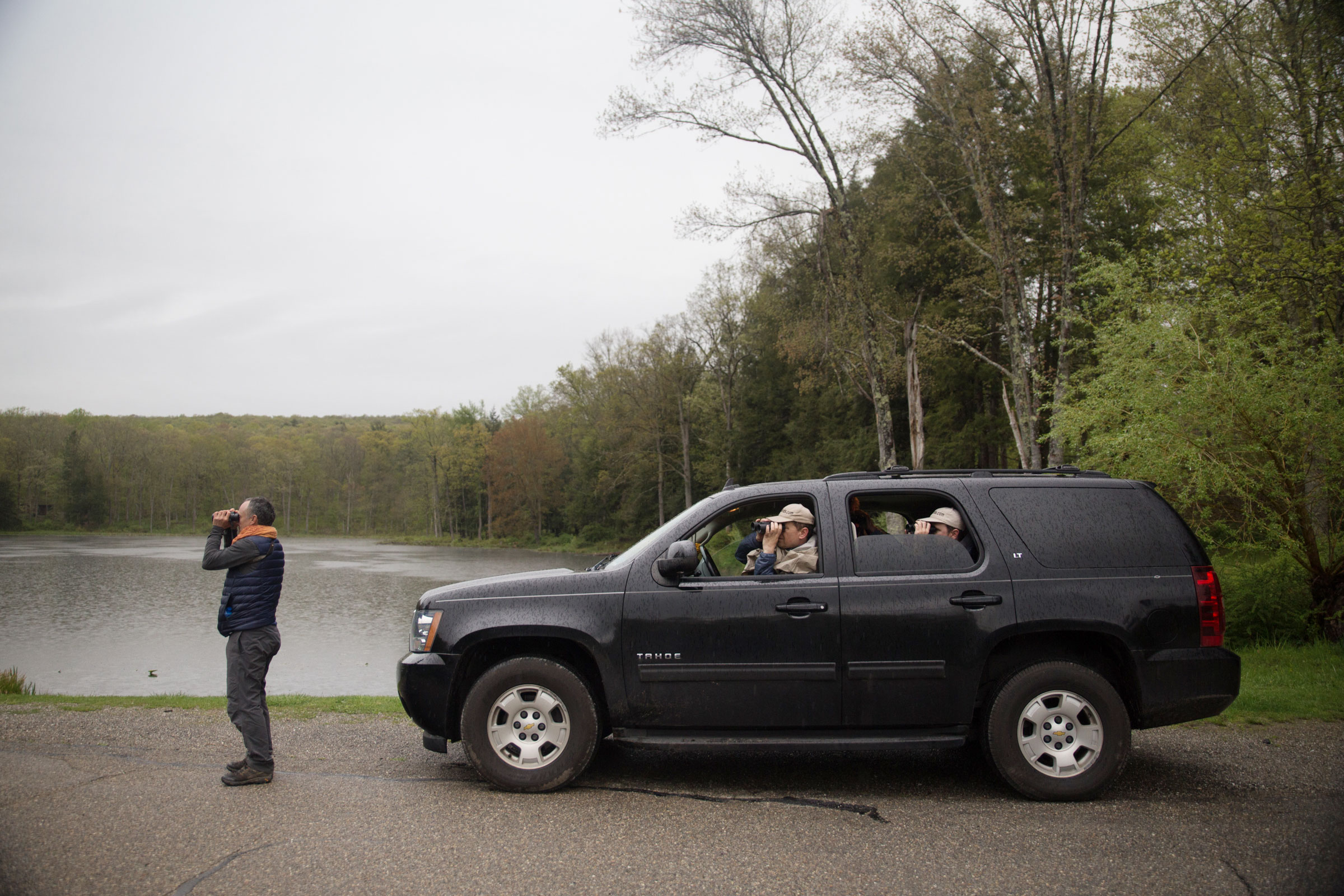 Ken Walsh of 1000birds tries to get a bead on a distant bird. Unless necessary, teams often try to get as many birds from the car as they can to save time. Camilla Cerea/Audubon